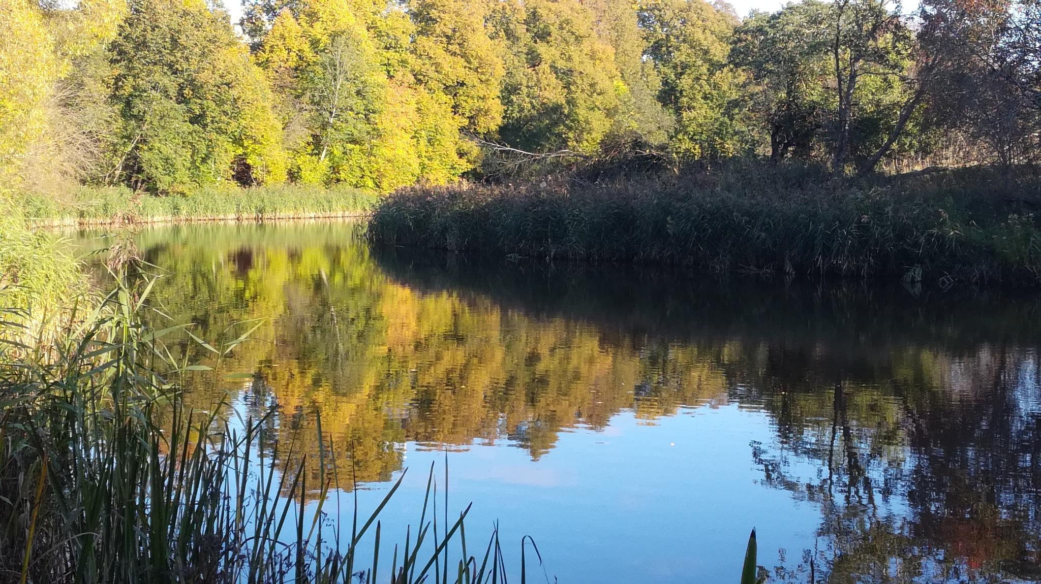 In the autumn by uzkuraitiene62