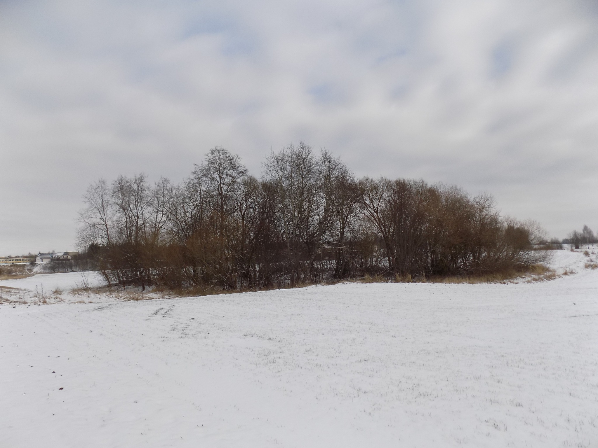 Winter landscape by uzkuraitiene62