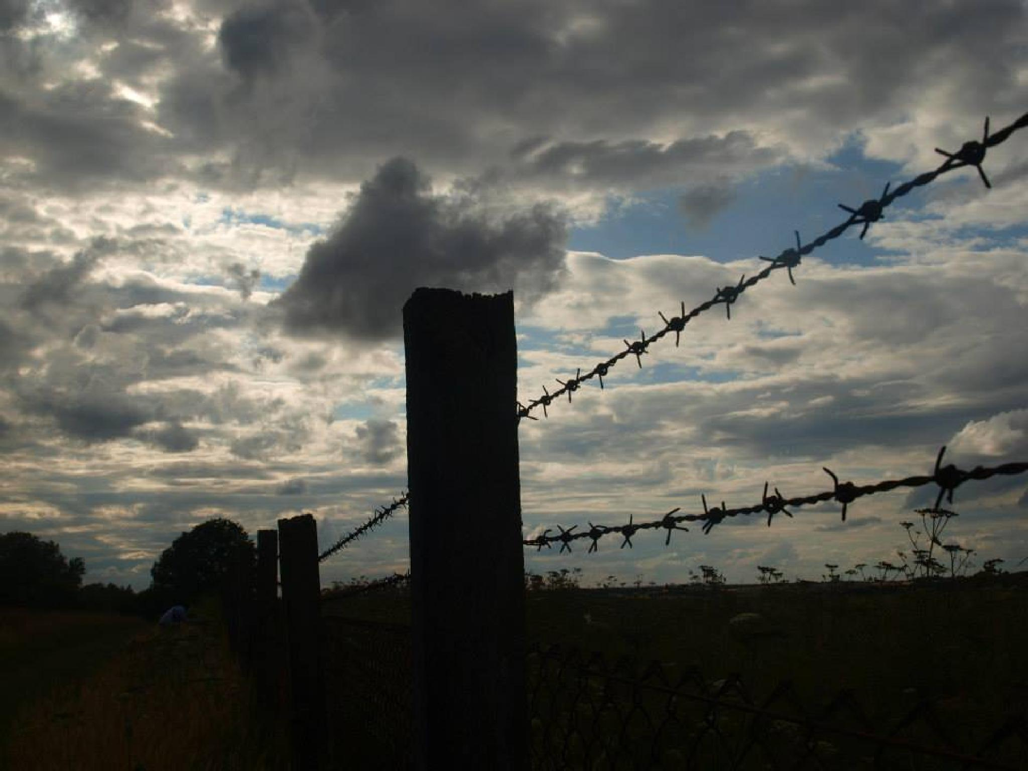 barbed wire fence by sahrsorie