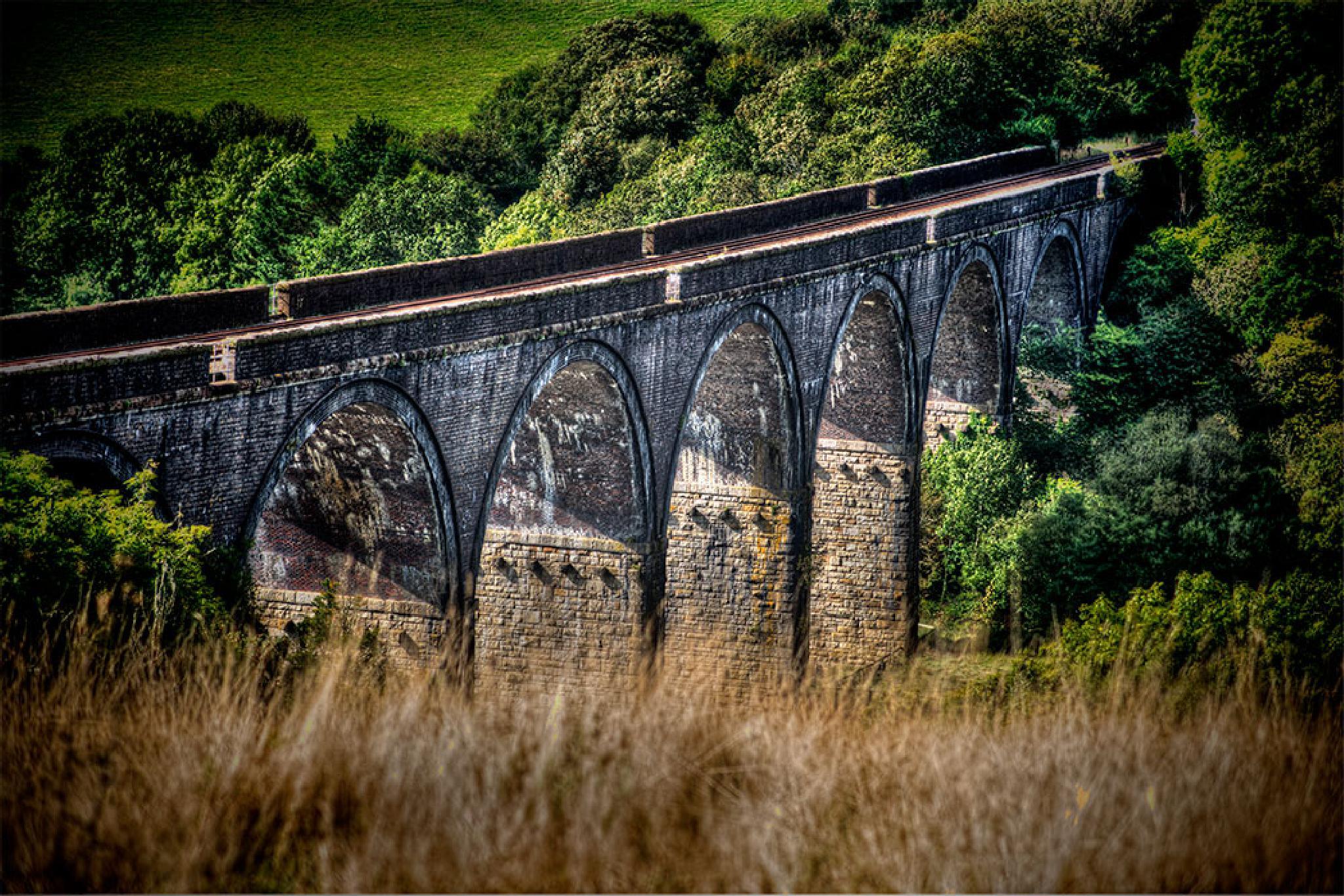 Saltsh Viaduct by mikepl12
