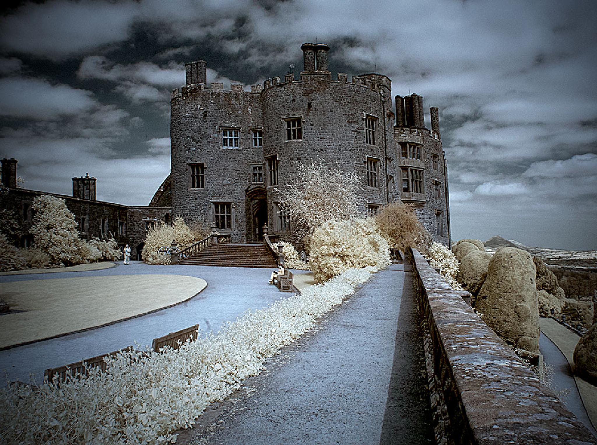 castle in Wales   by mikepl12