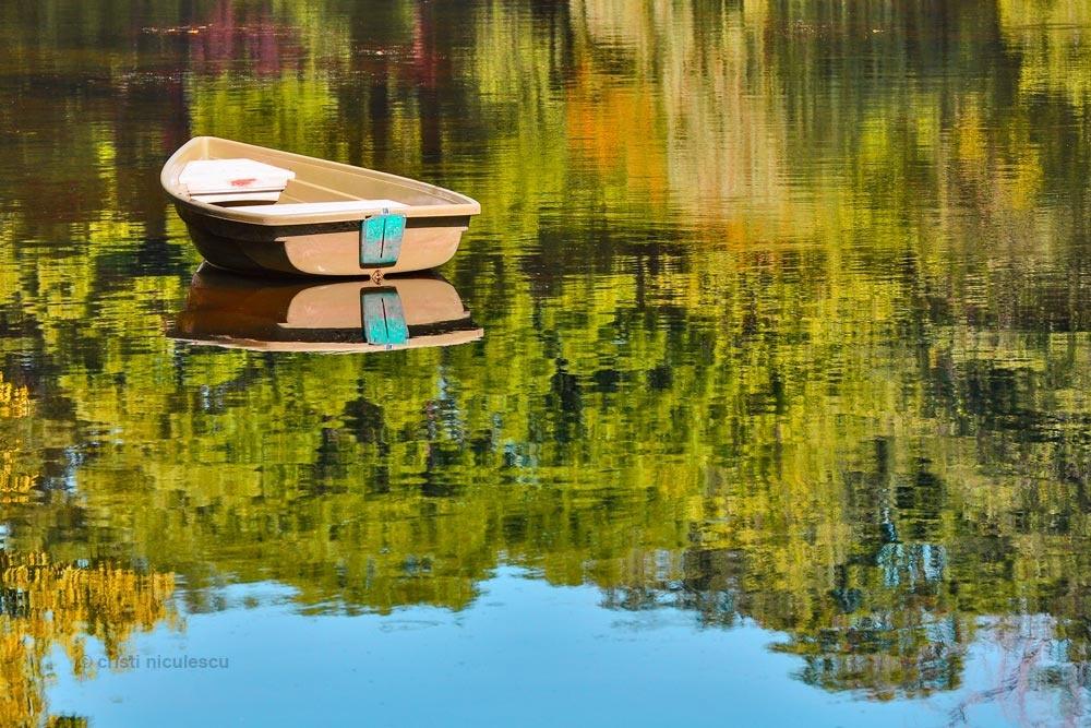 Boat by Cristi Niculescu