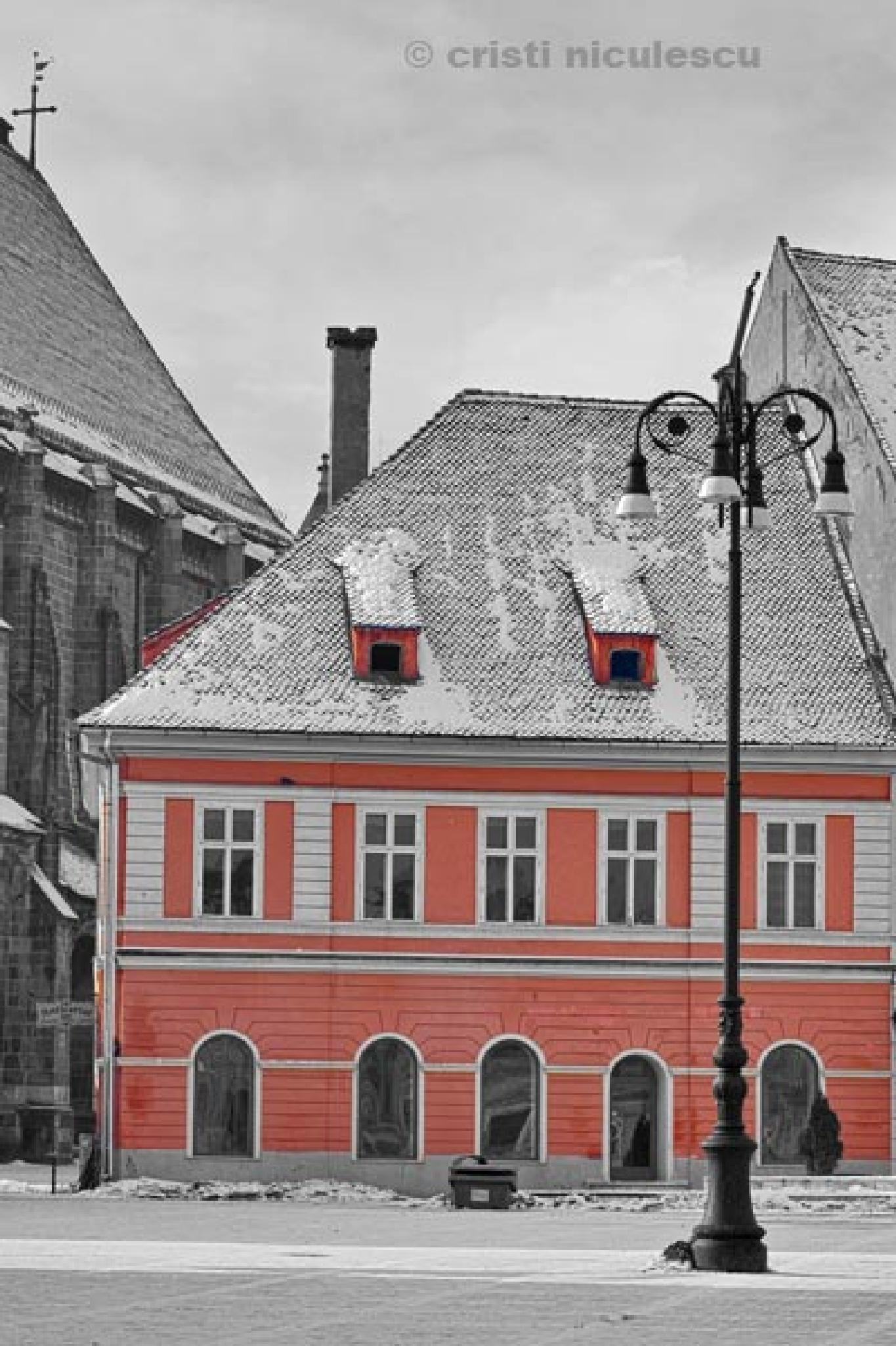Red House, Black Church by Cristi Niculescu