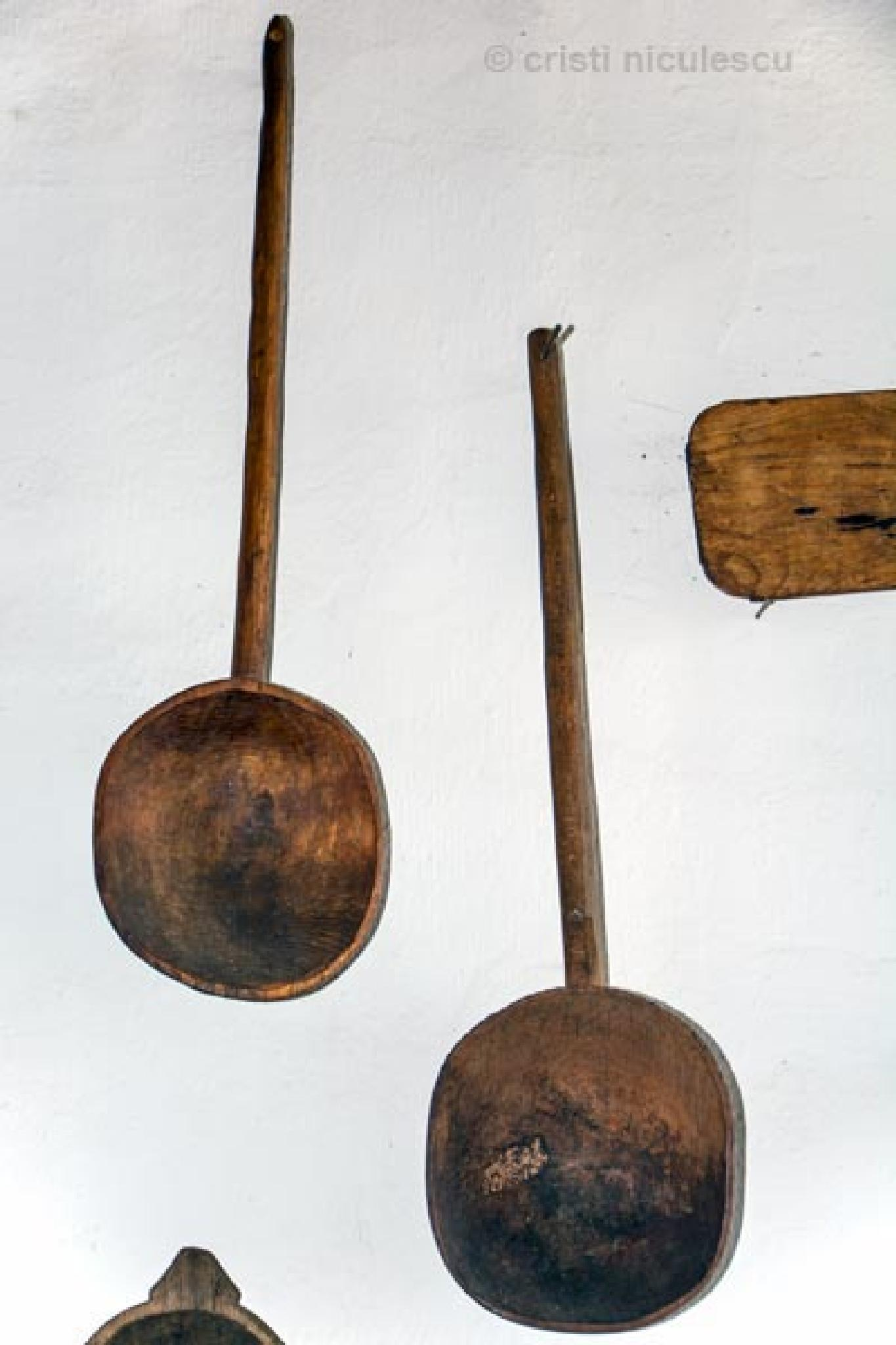 Spoons by Cristi Niculescu