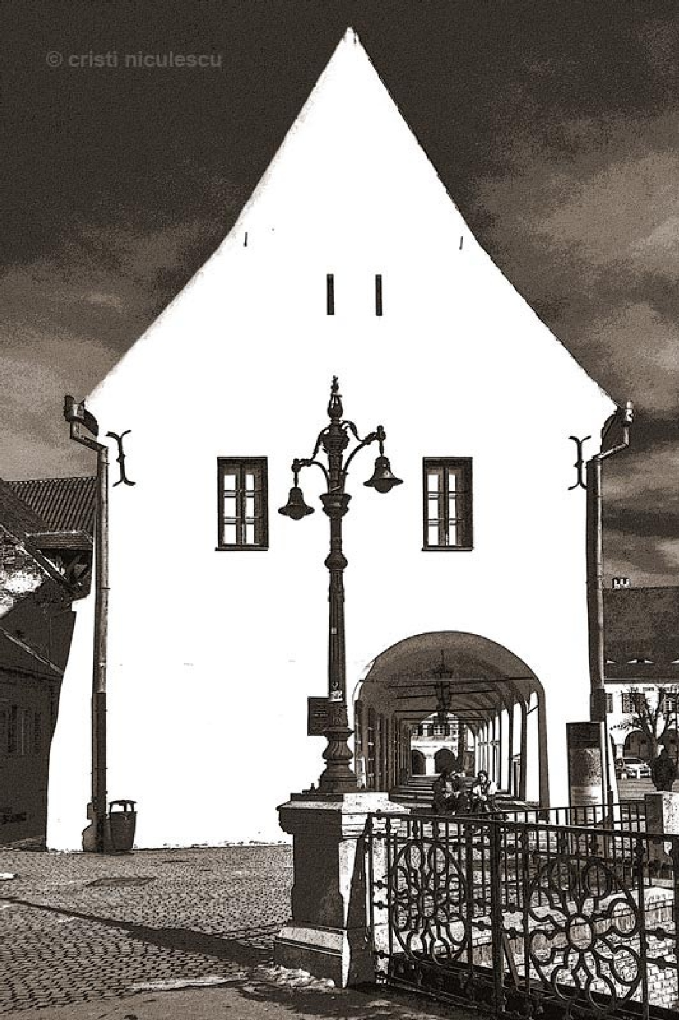 House of Arts by Cristi Niculescu