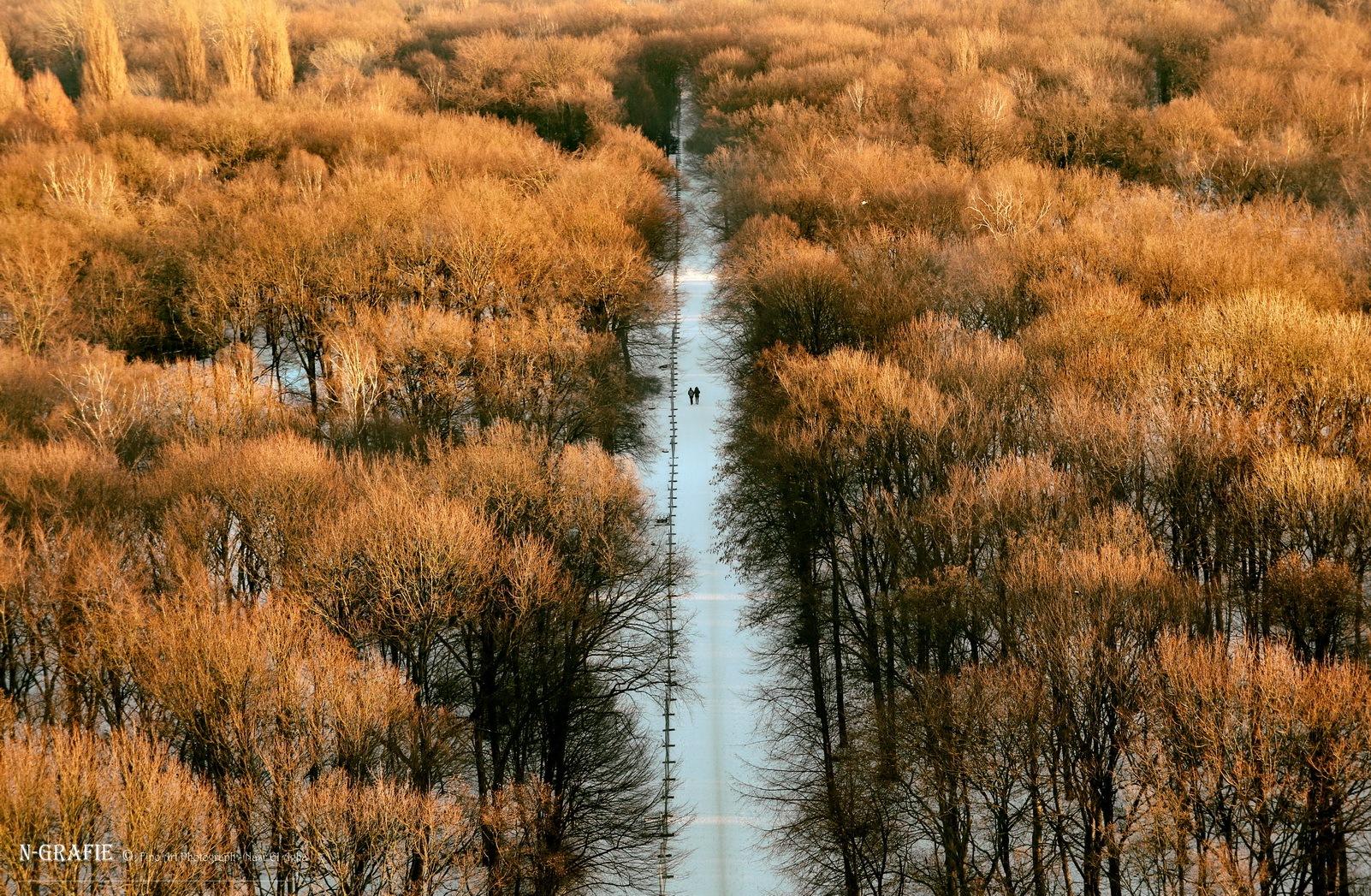 Autumn in Berlin by Nasr El Agha