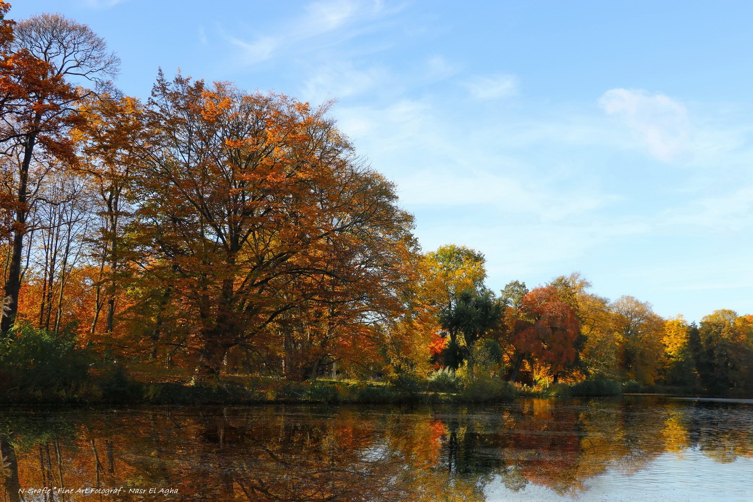 Pracht of nature in Berlin Autumn Impressions by Nasr El Agha
