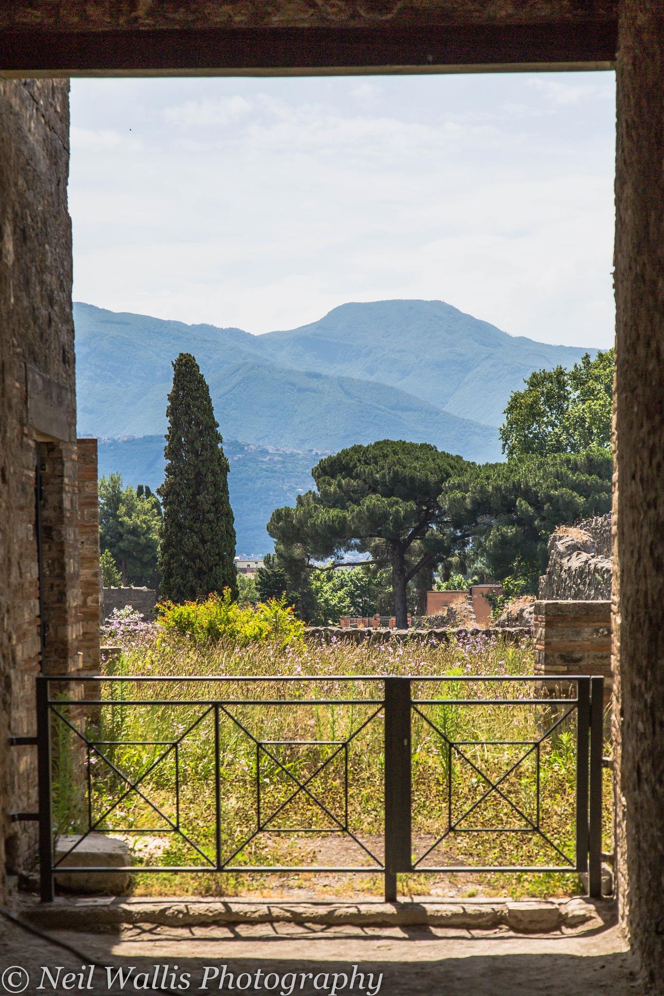 Through the pillars in Pompeii, Naples, Italy. by Neil Wallis