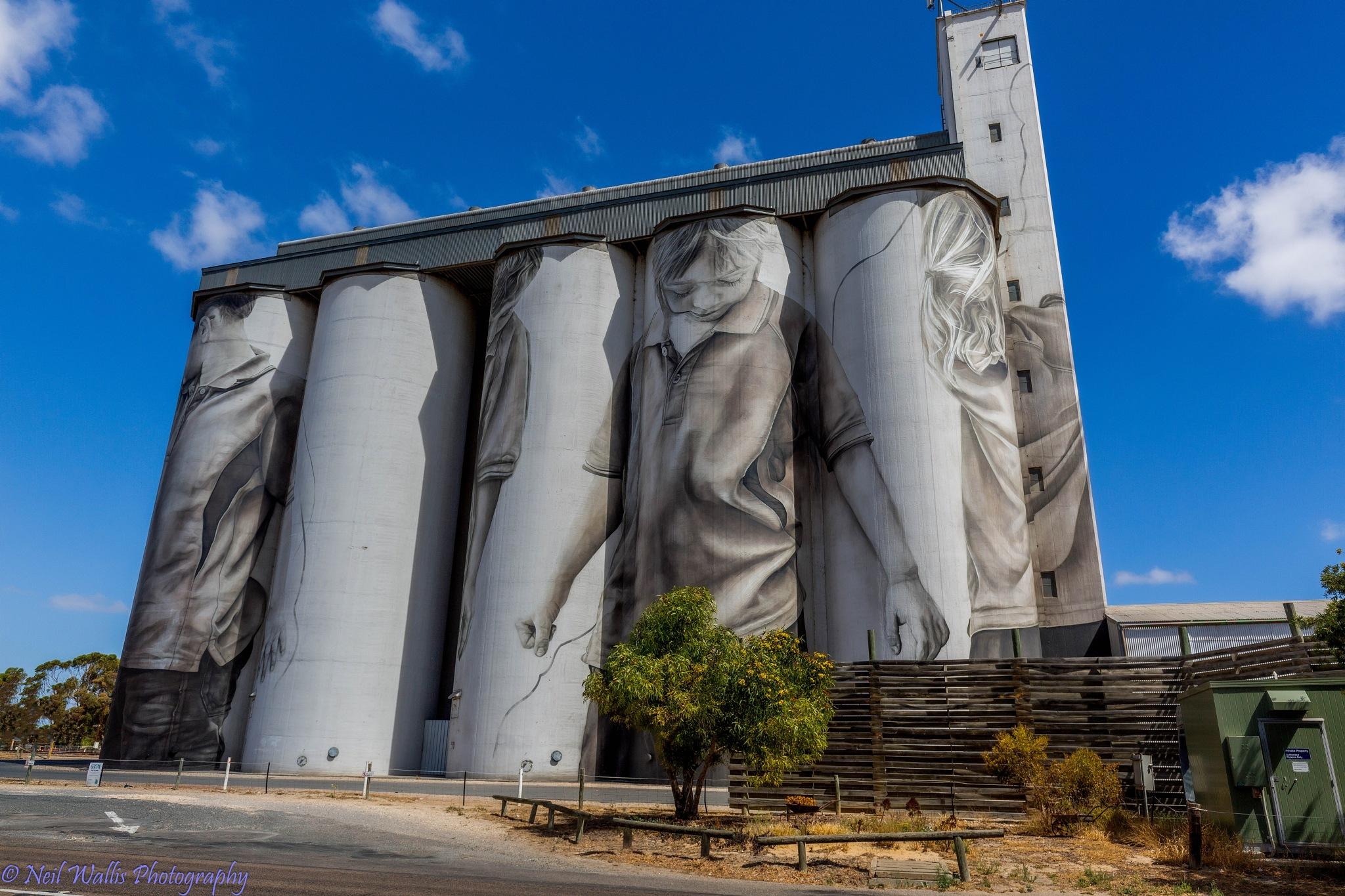 Coonalpyn Wheat Silo Art by Neil Wallis