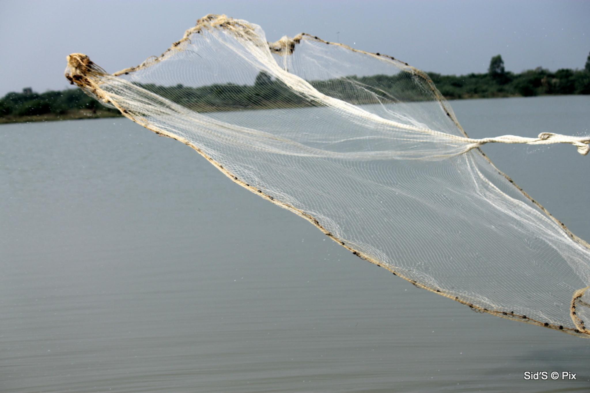 The Fishing Net by Siddharth Sanyal