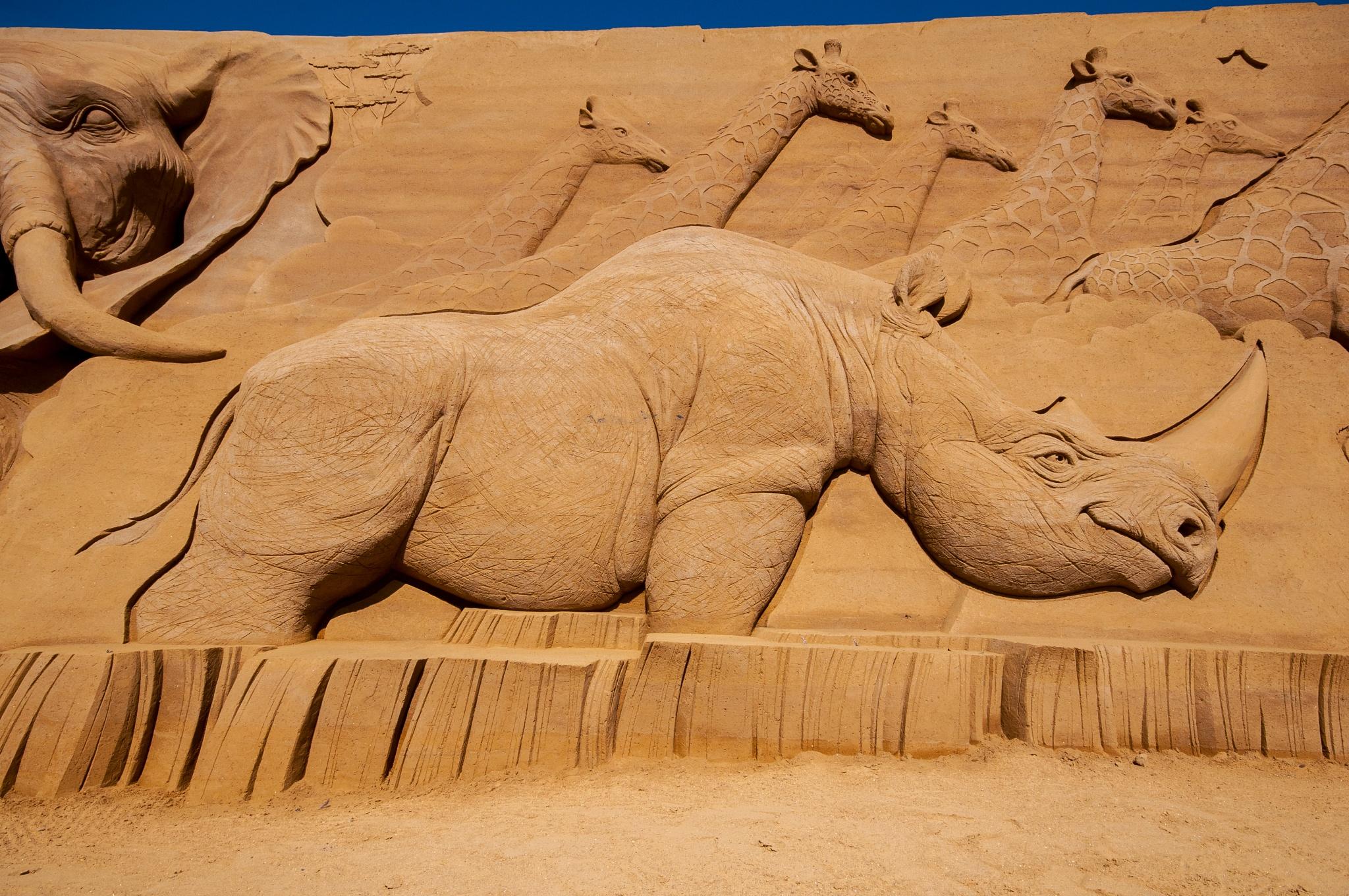 Photo in Sea and Sand #content rhino #sandsculpture #festival #2016