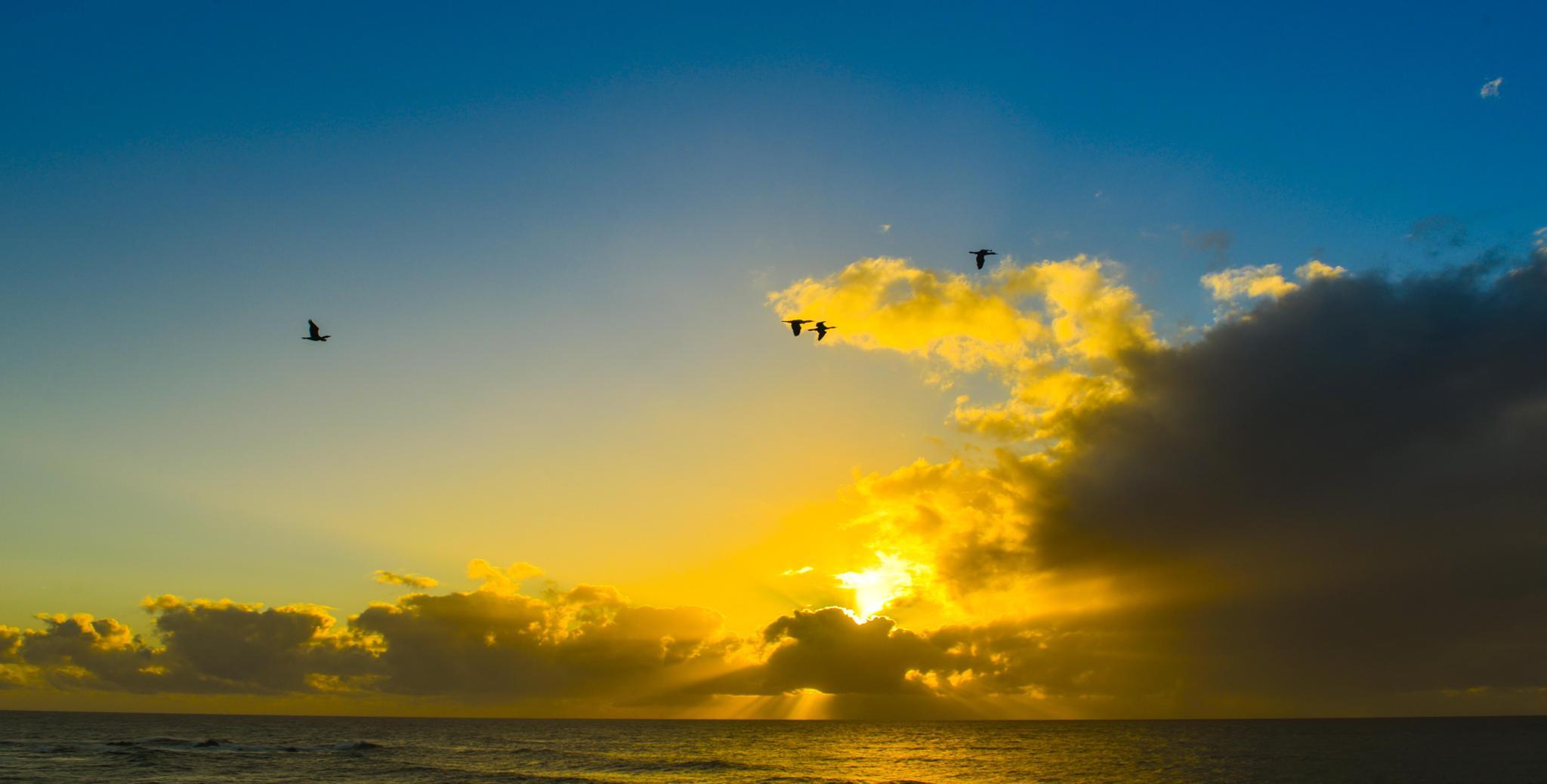 Sunrise by chrisgnixon