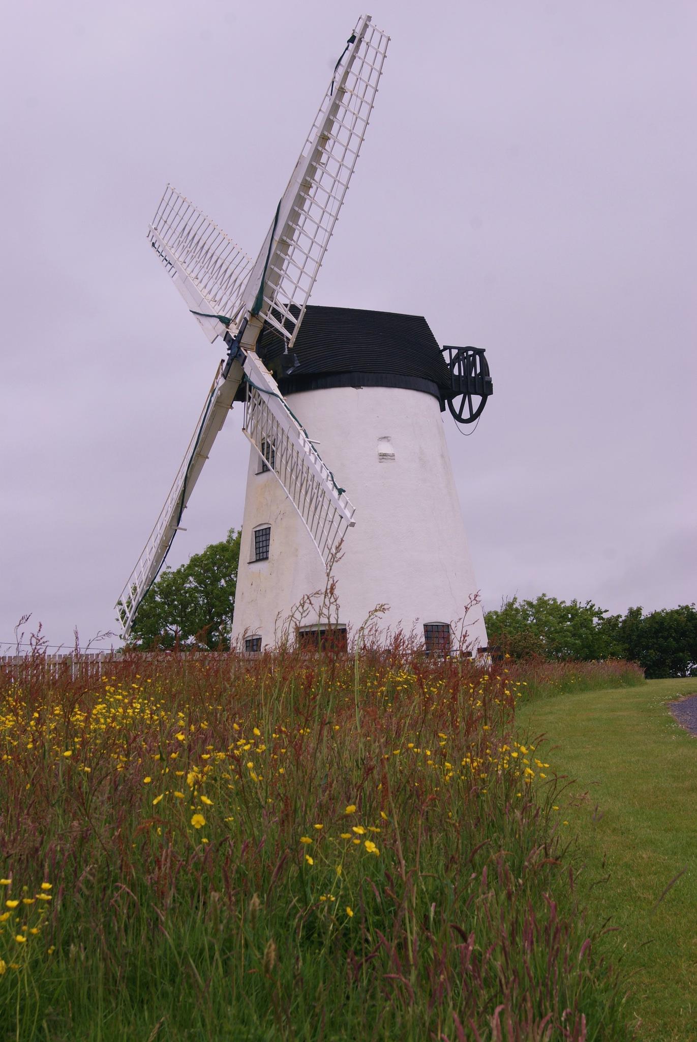 Llynon Mill .... by Carole Lesley Hyatt