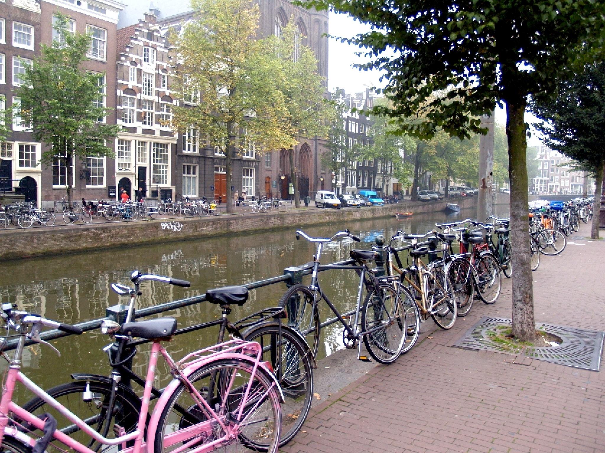 Amsterdam by Zbigniew Włodarski