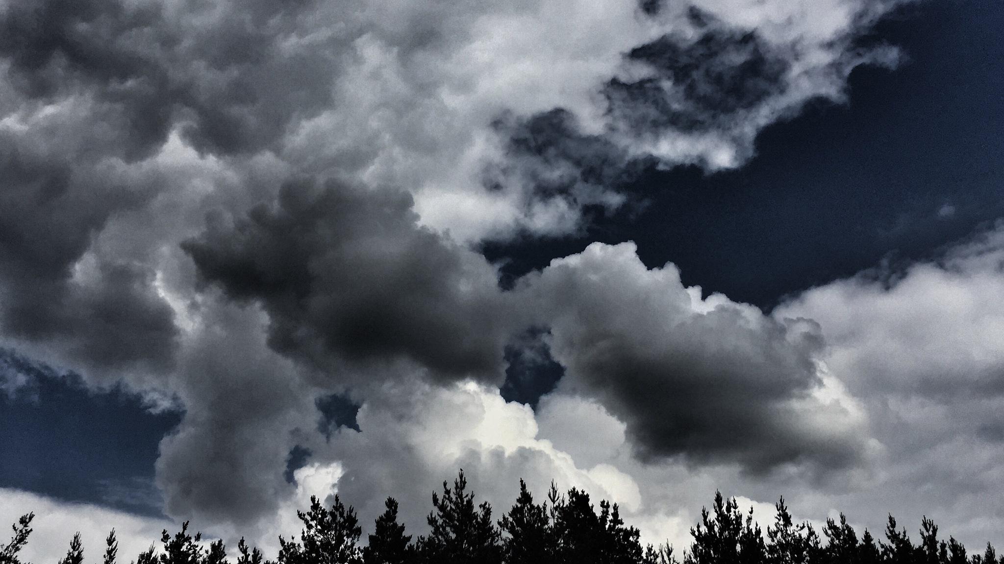 Cloud by Zbigniew Włodarski