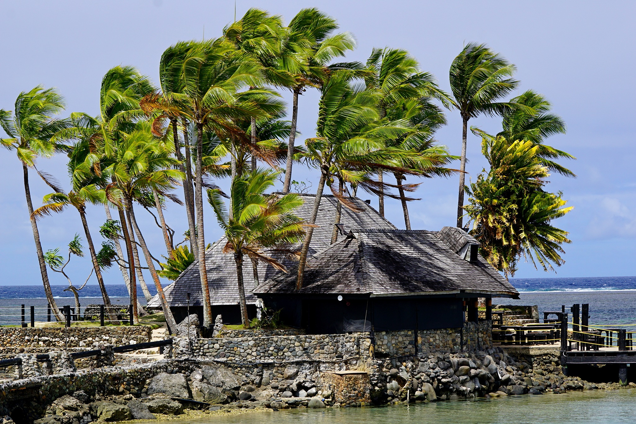 Windy day in Fiji by Peter J Dwight
