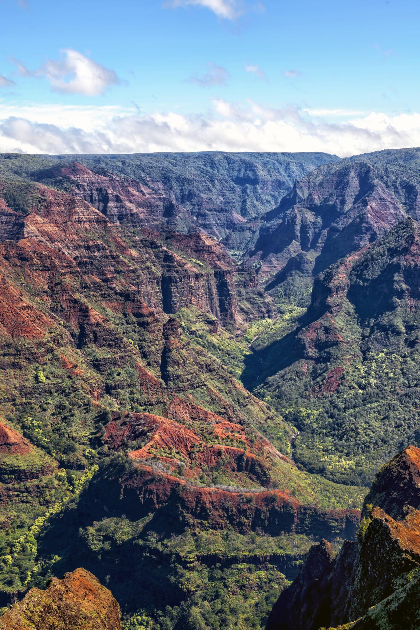 Upper Waimea River Canyon by Dennis Hoffbuhr