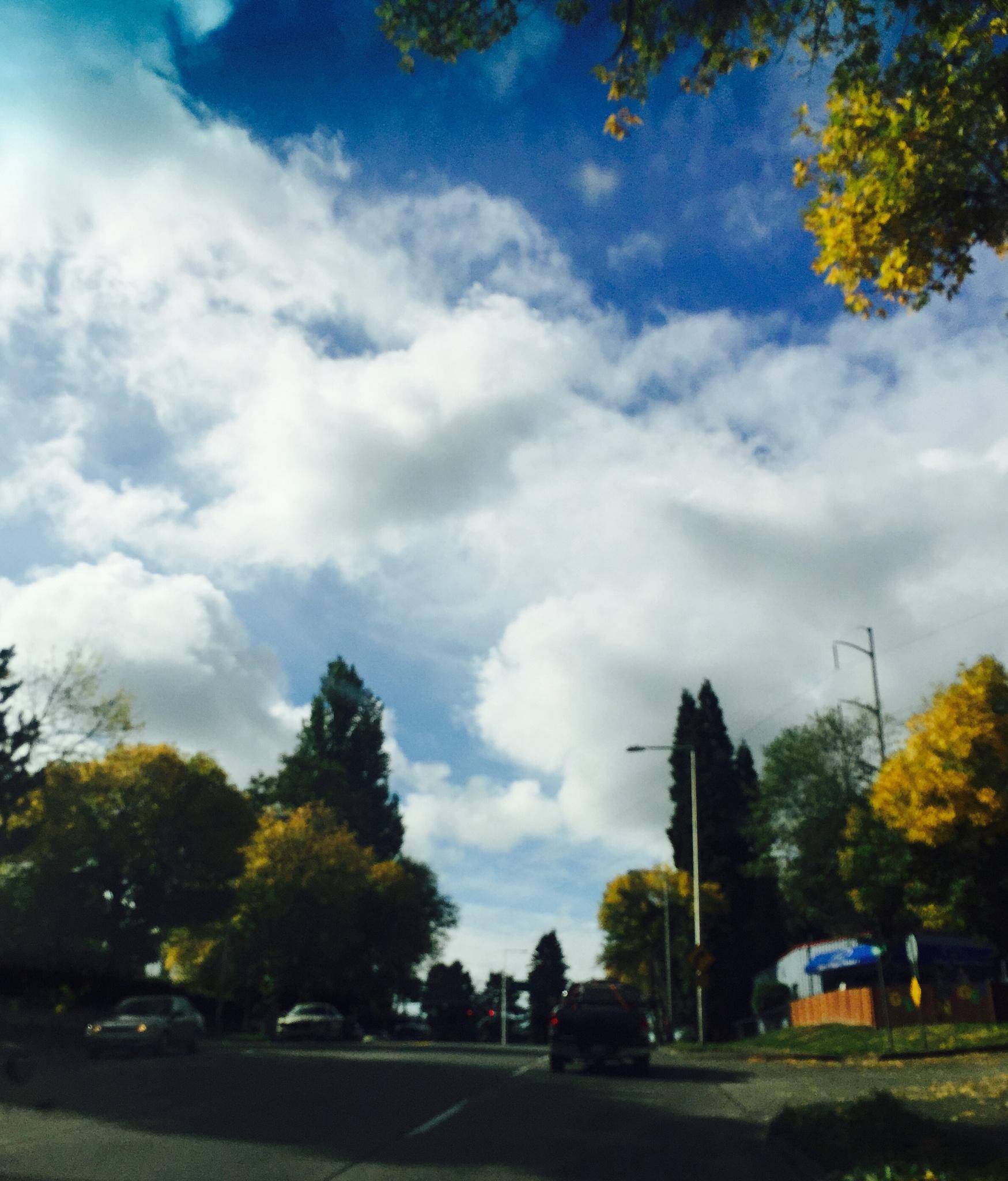 Car window view by imogenedog