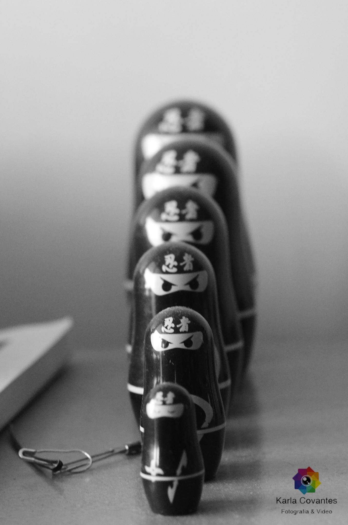 Matryoshka Madness Ninja by Karla Covantes Photography