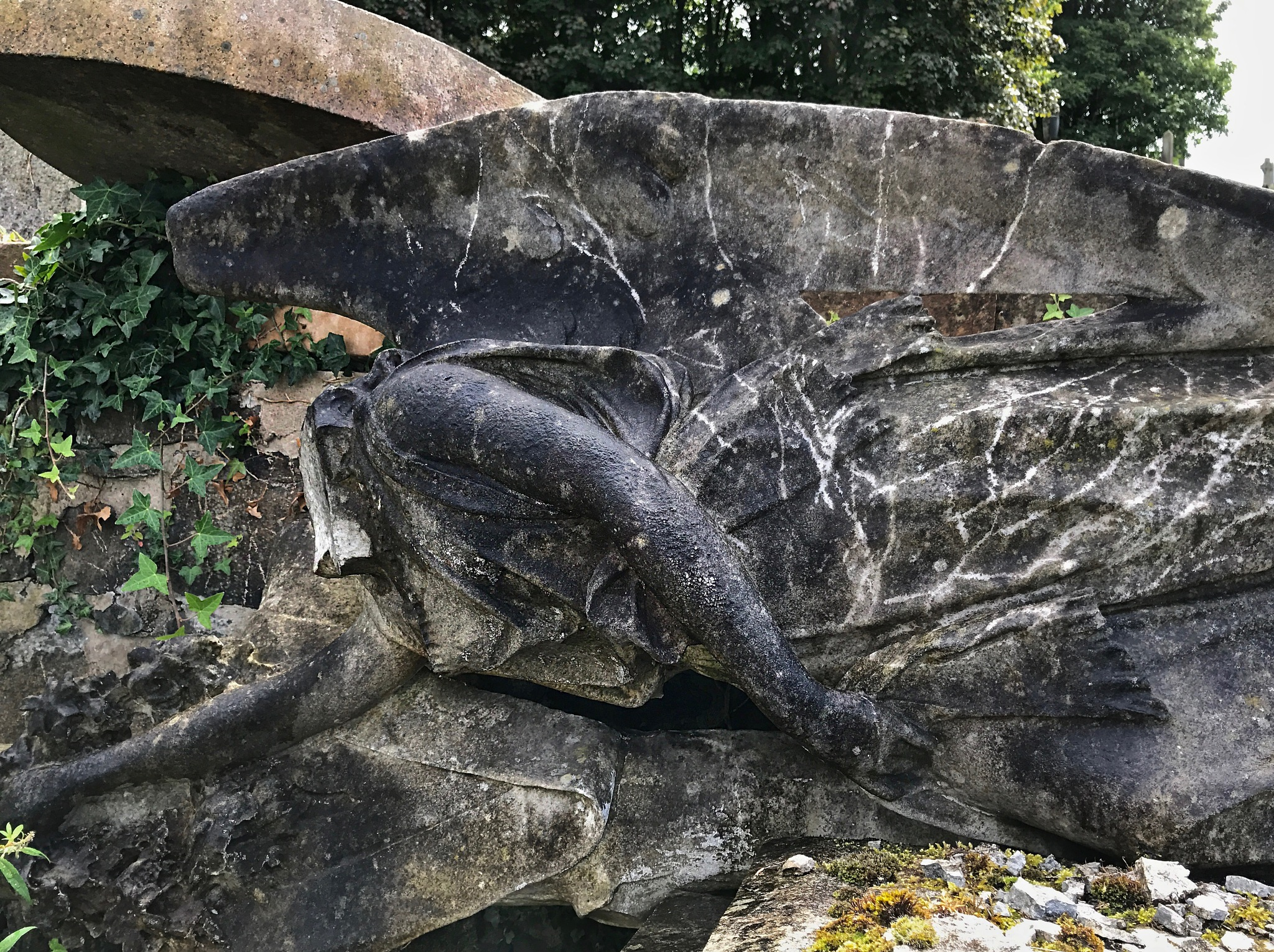Fallen Angel by warriston