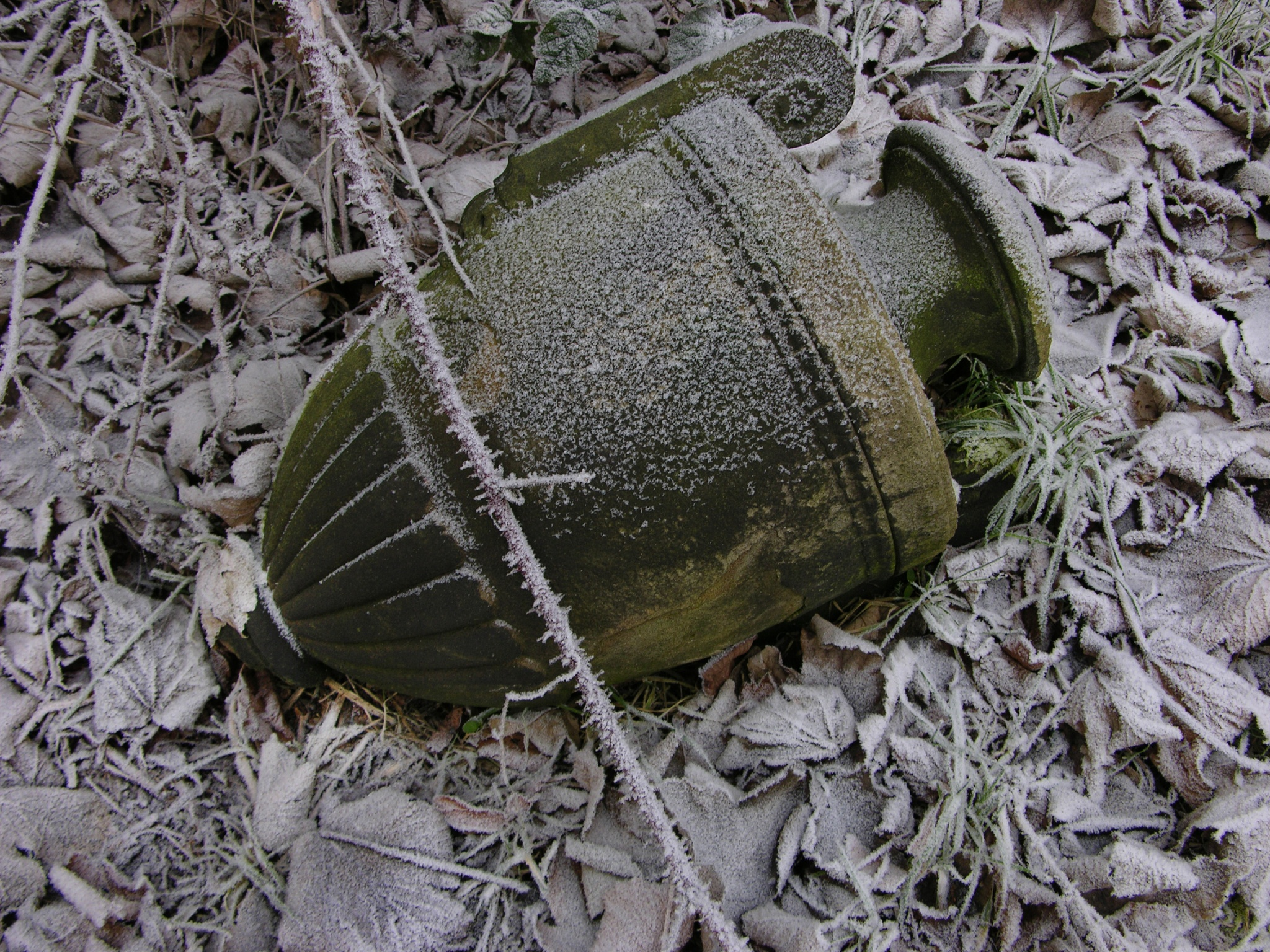 Winter at Warriston Cemetery  by warriston