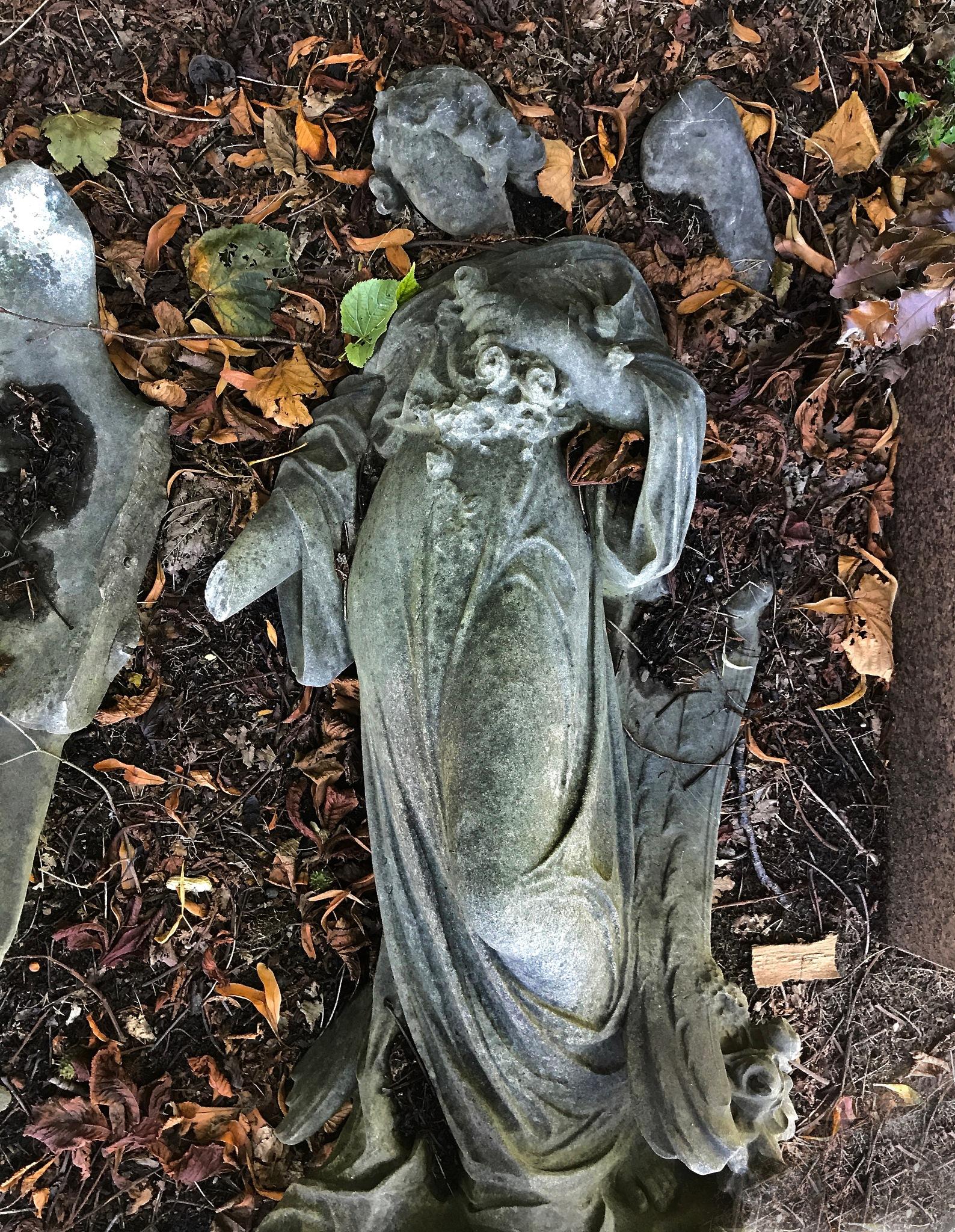 Fallen Angel by warriston