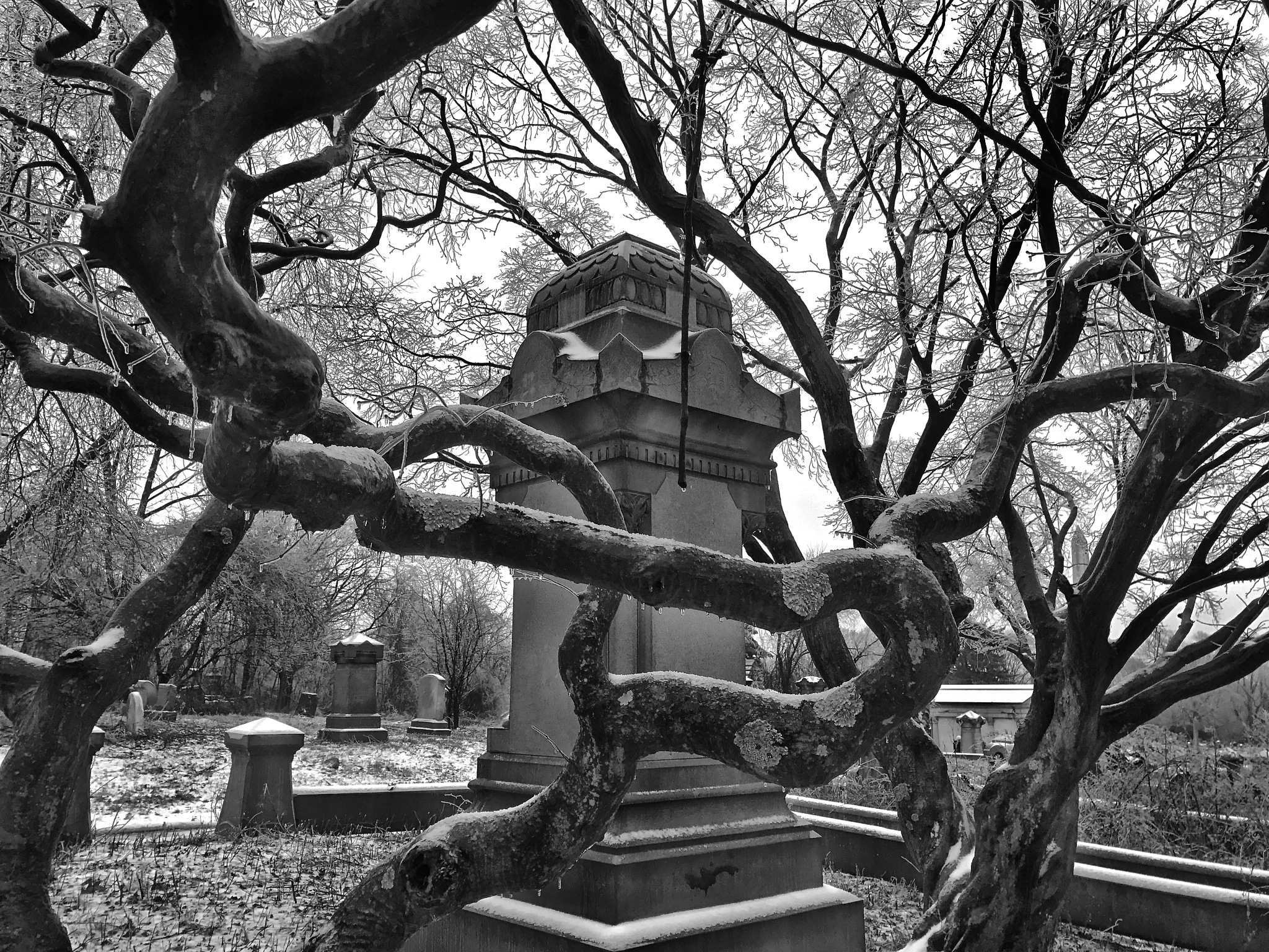 Mount Moriah Cemetery - Philadelphia by warriston