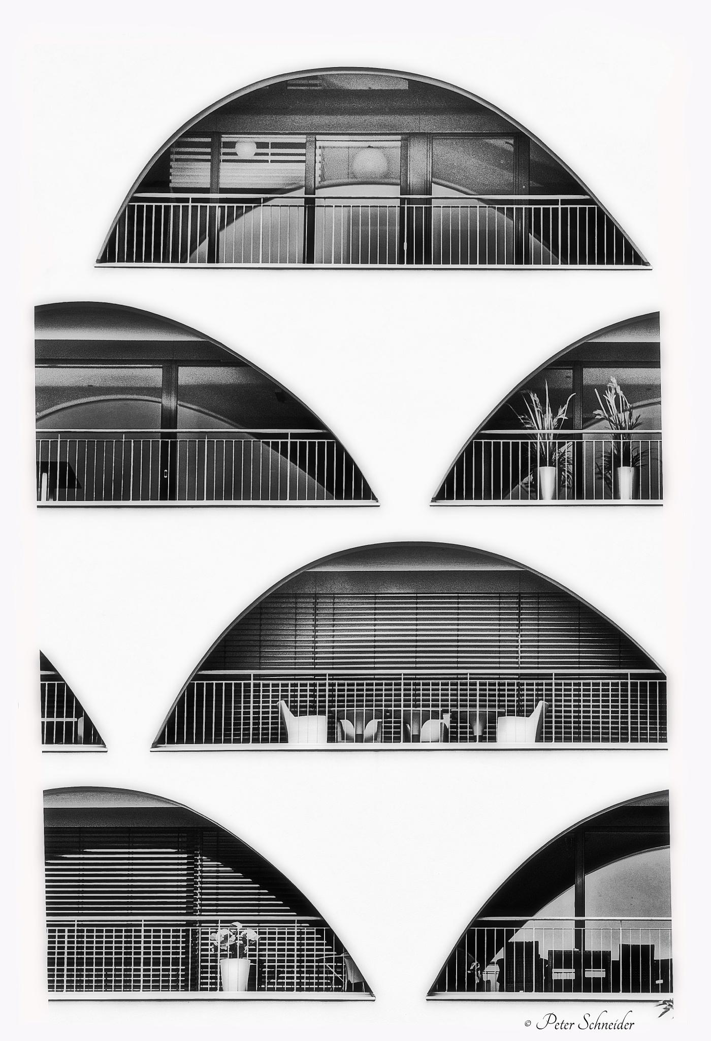 Arcs. by  Peter Schneider