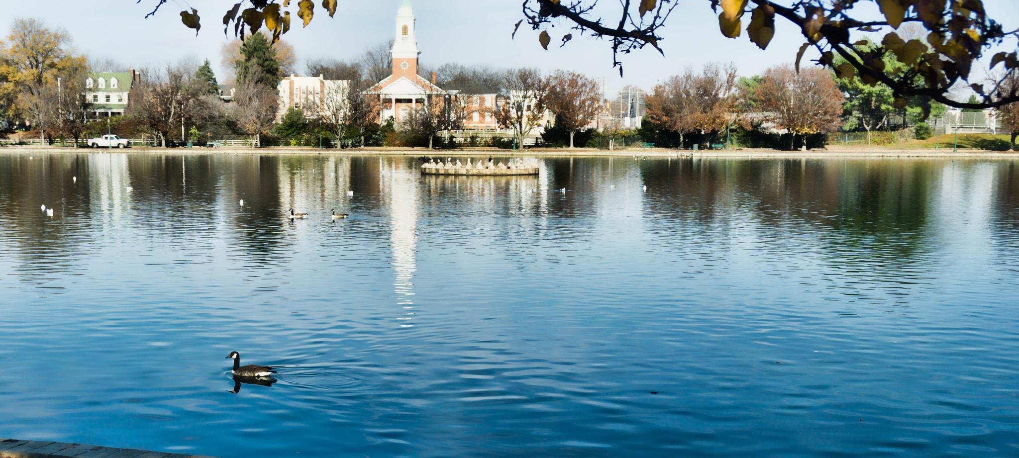 December in Shield's Lake by mjdrhd