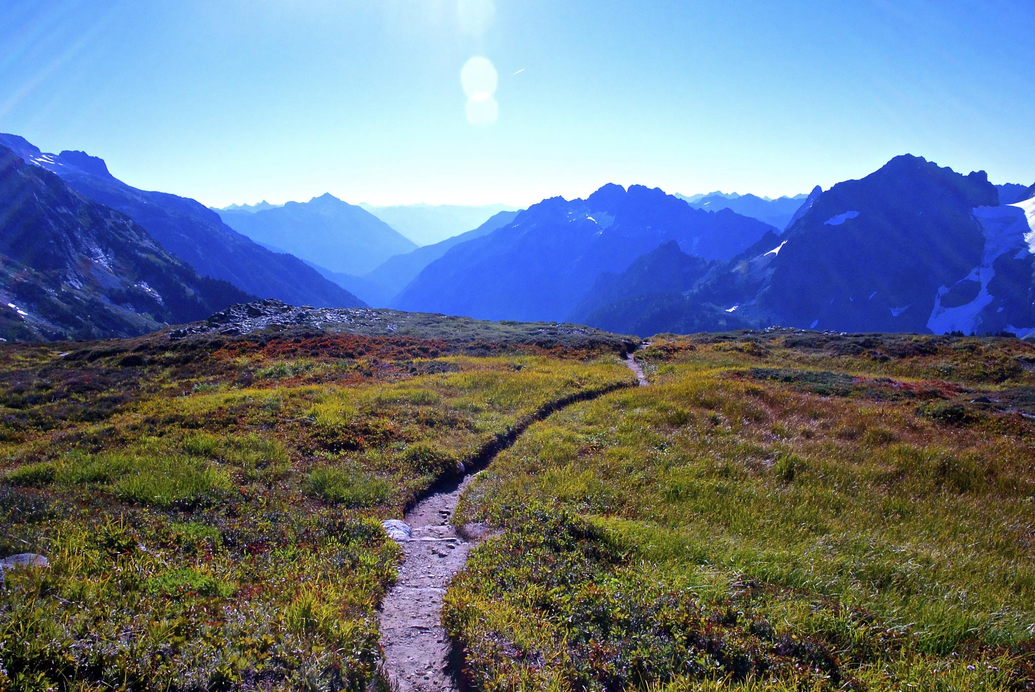 Photo in Landscape #hiking #backpacking #sahale arm trail #north cascade