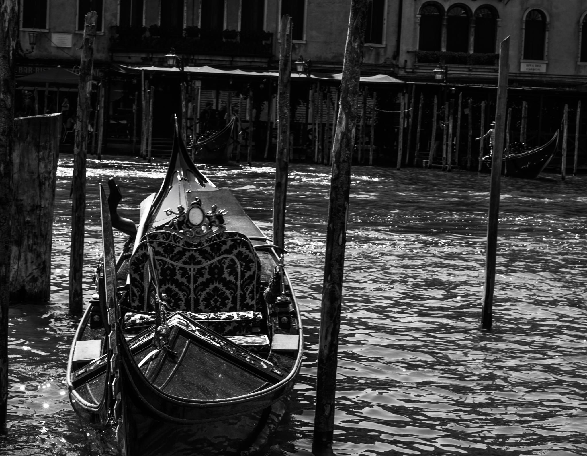 Gondola  by Jen Branton
