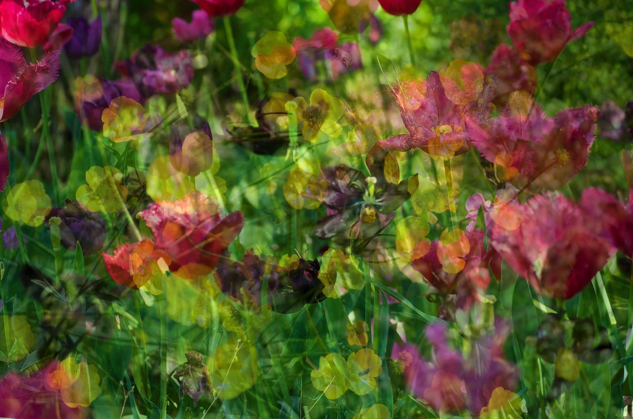 Superimposed by Lydie Burgunder