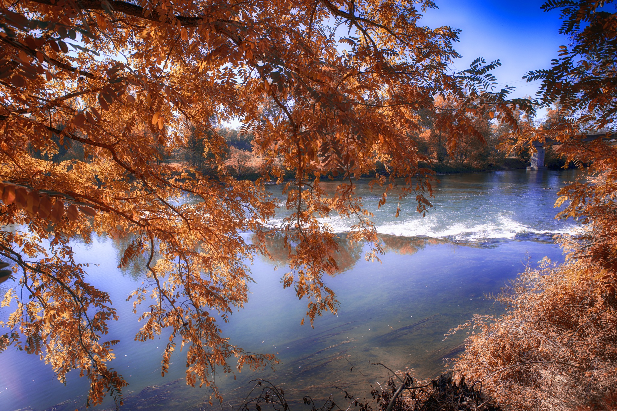 Sunny autumn day near Toulouse. by Lydie Burgunder