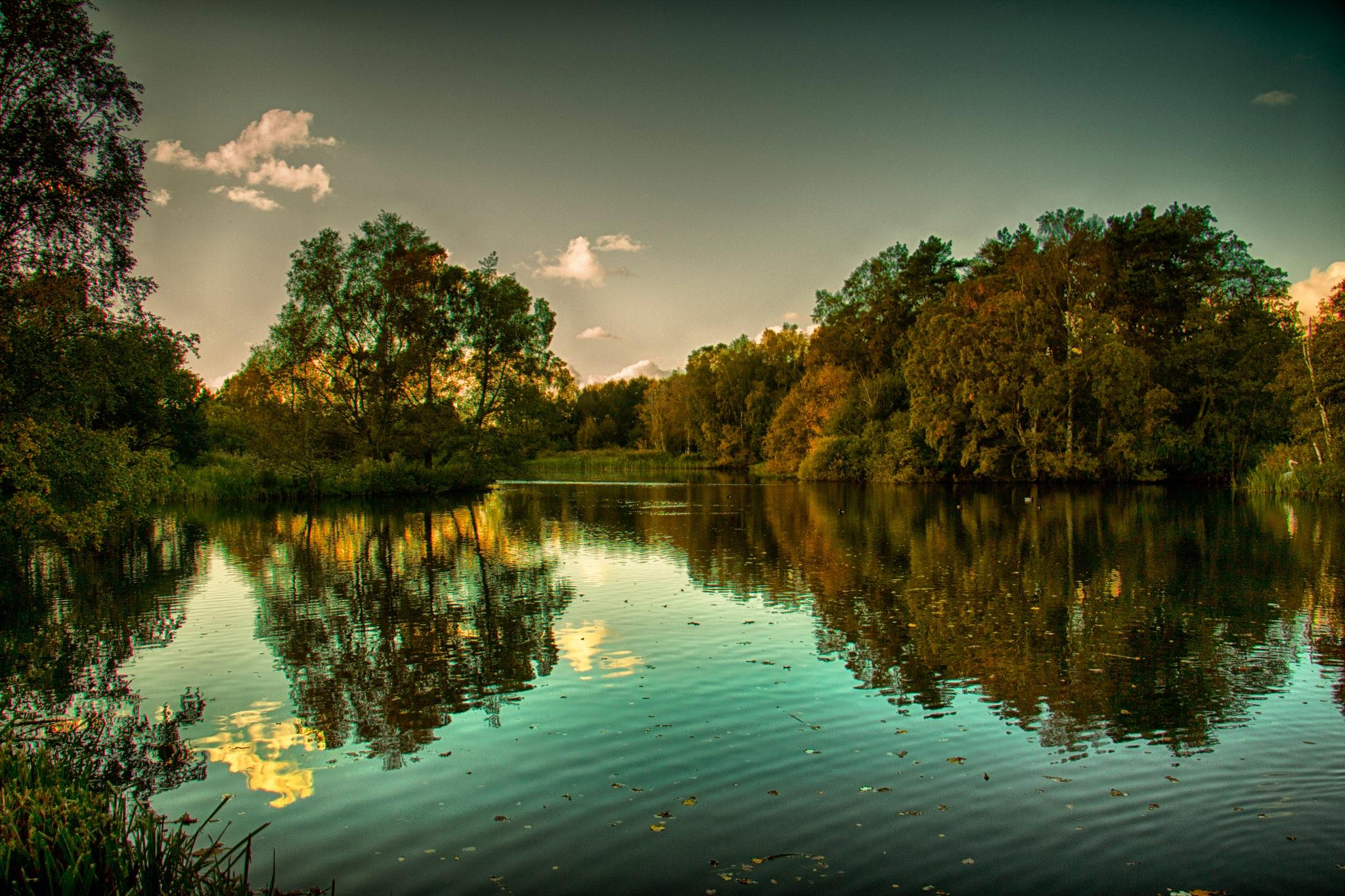 Pensthorpe Lake by chrisbryan1974