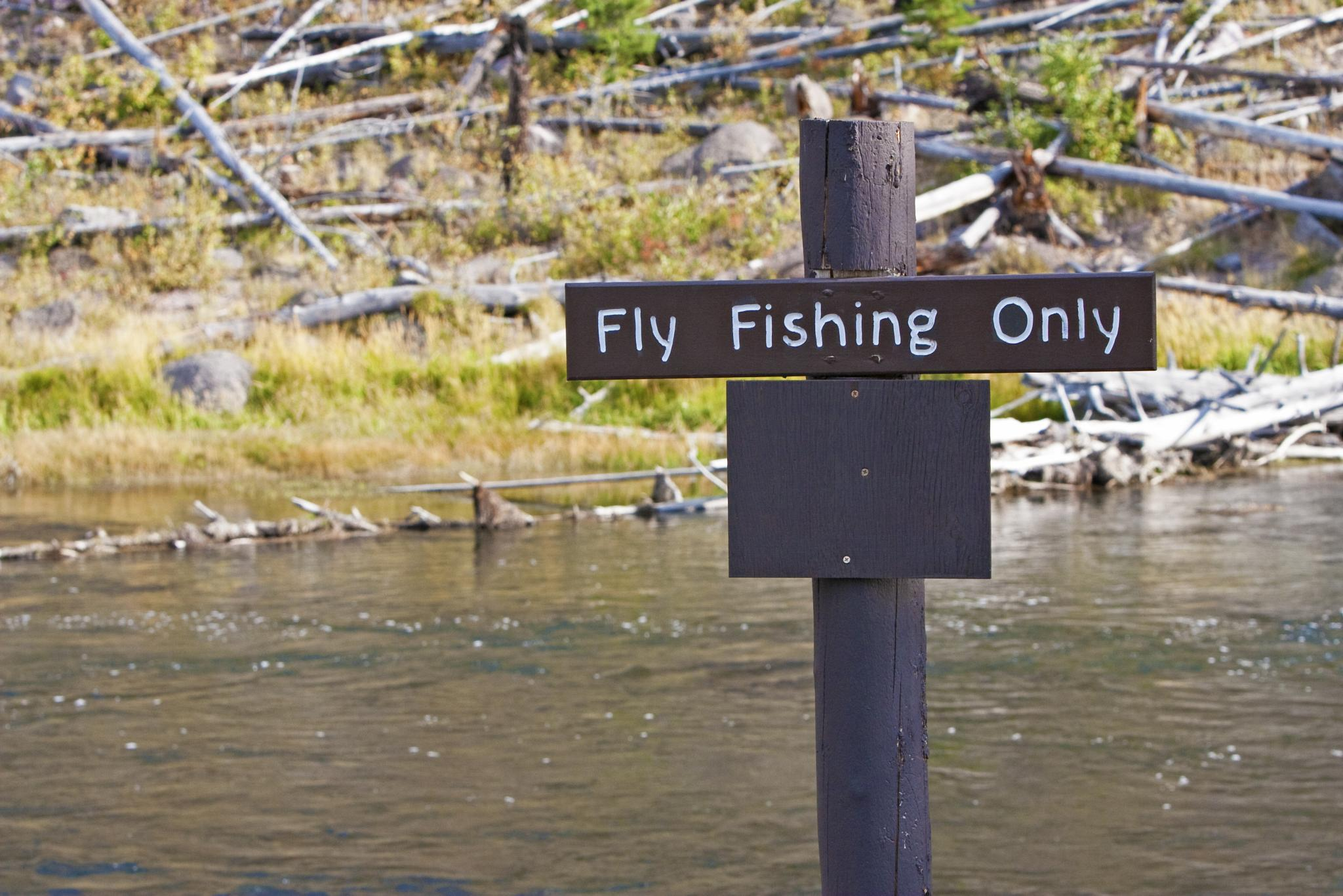 Fly Fishing Only - Yellowstone by Steve Ohlsen
