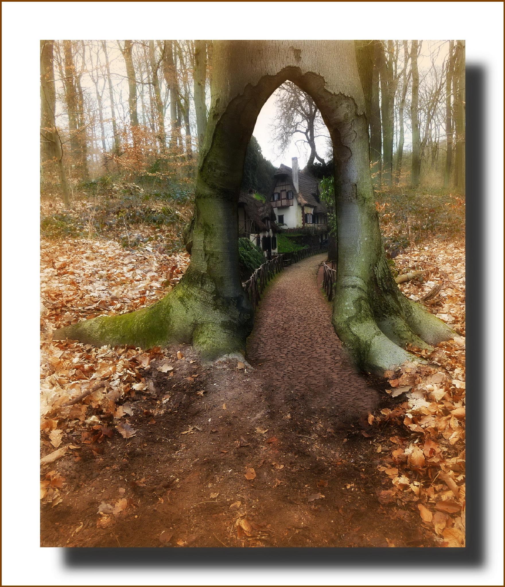 Door to another world by MonikaH