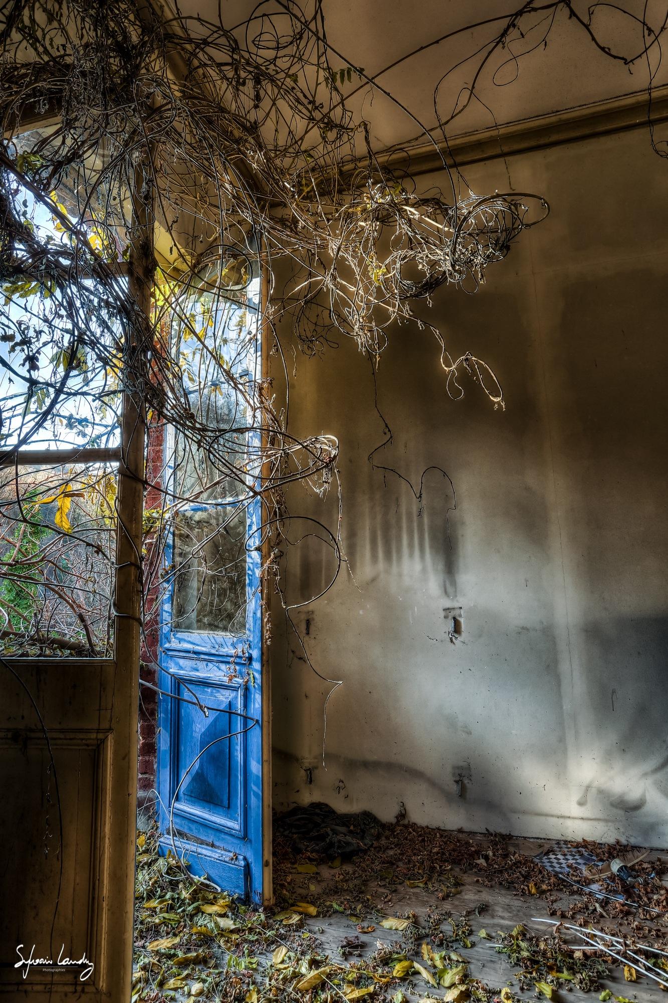 Urbex la maison belge dans la foret by Sylvain LANDRY