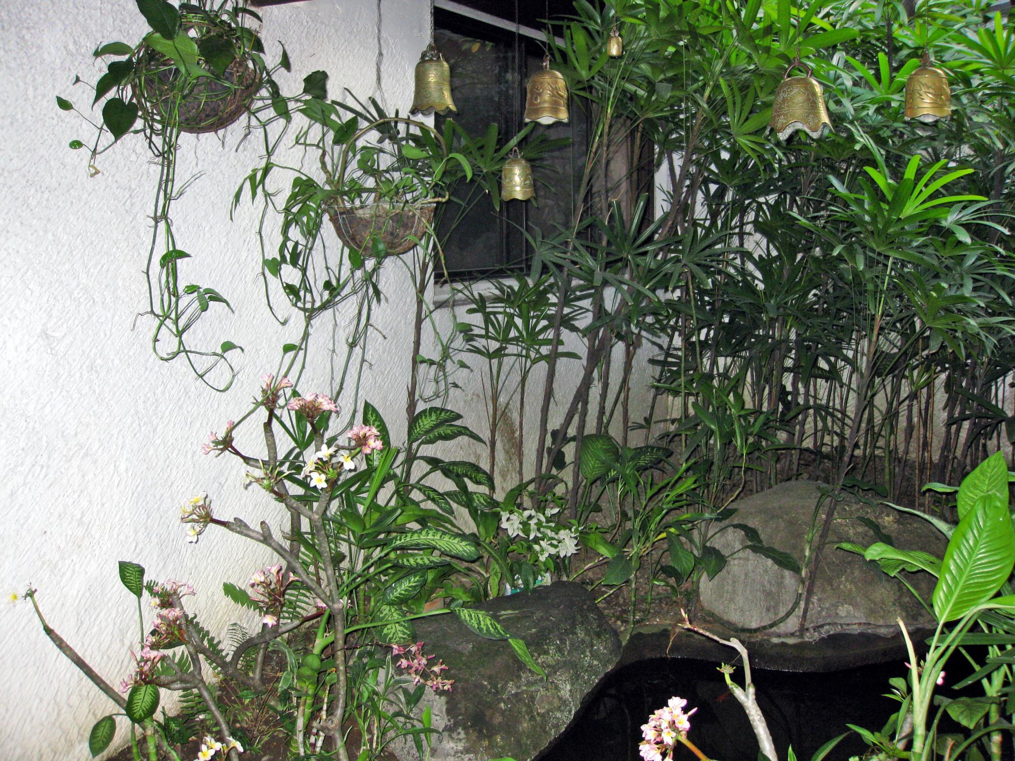 City  garden 3 by arraguado