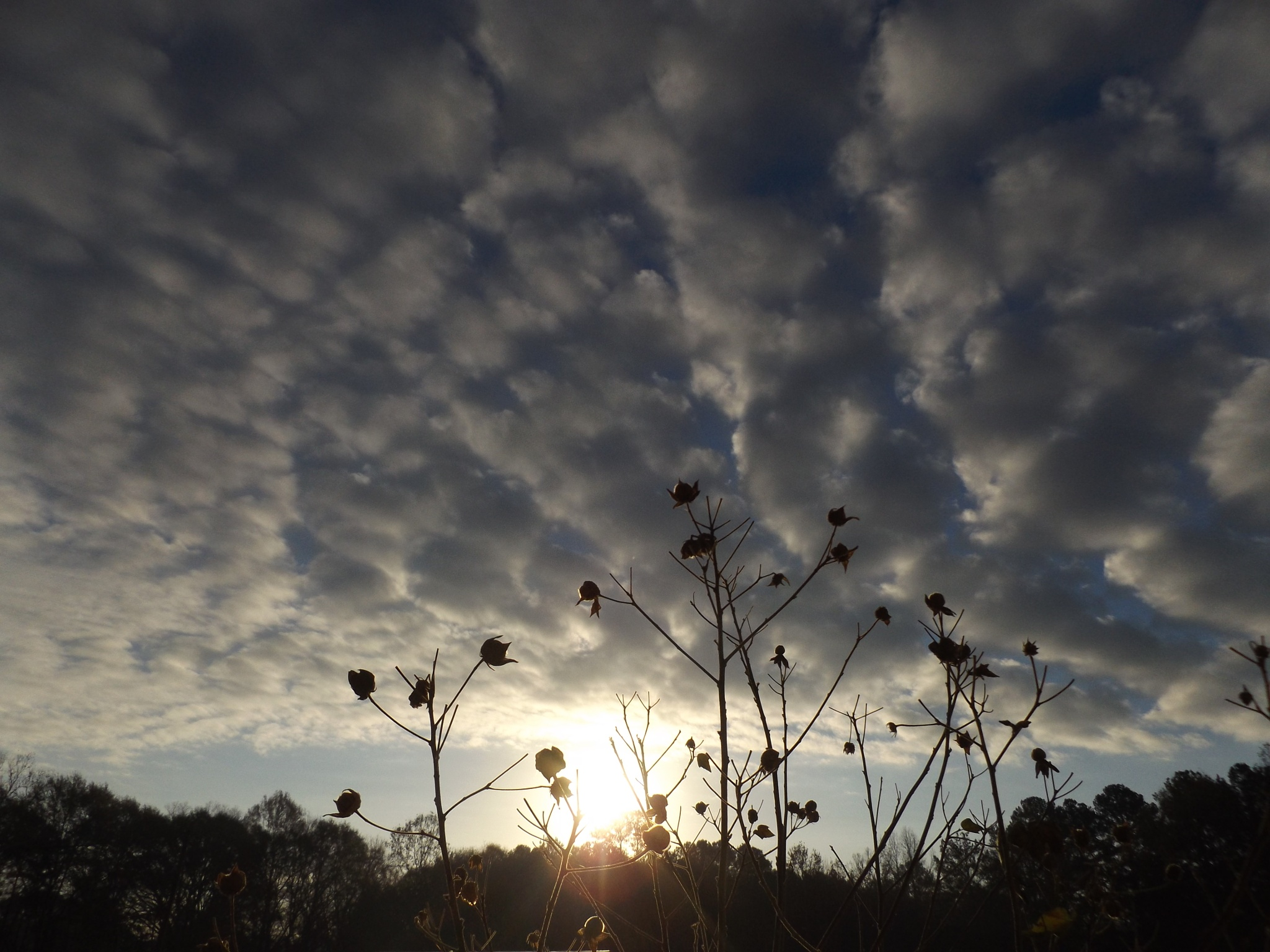 SUN & CLOUDS by ritamcbai66