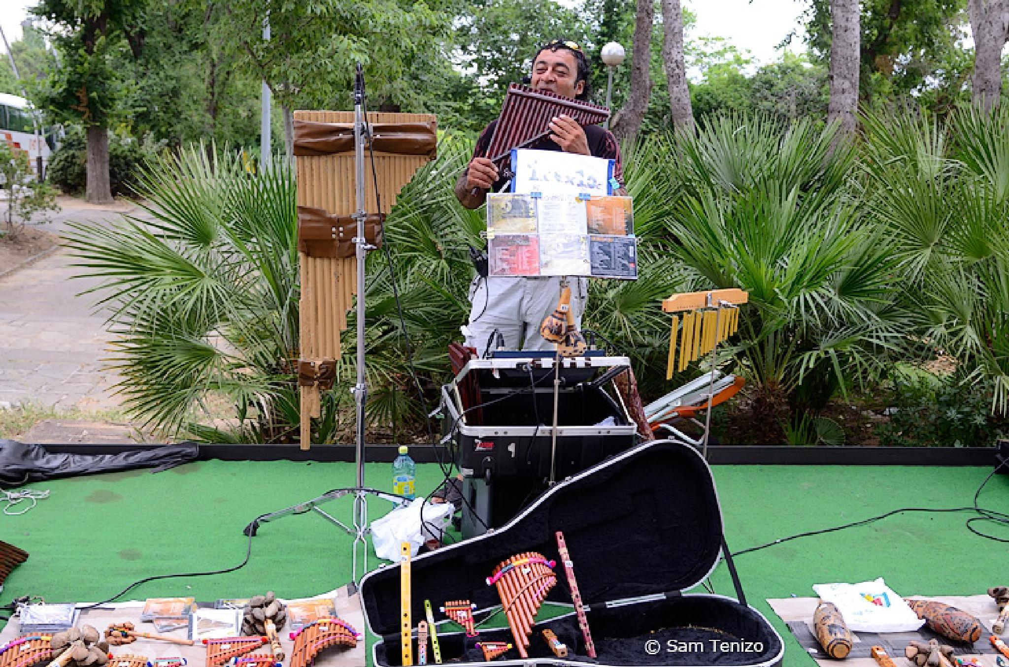 Street Musician by SamTenizo
