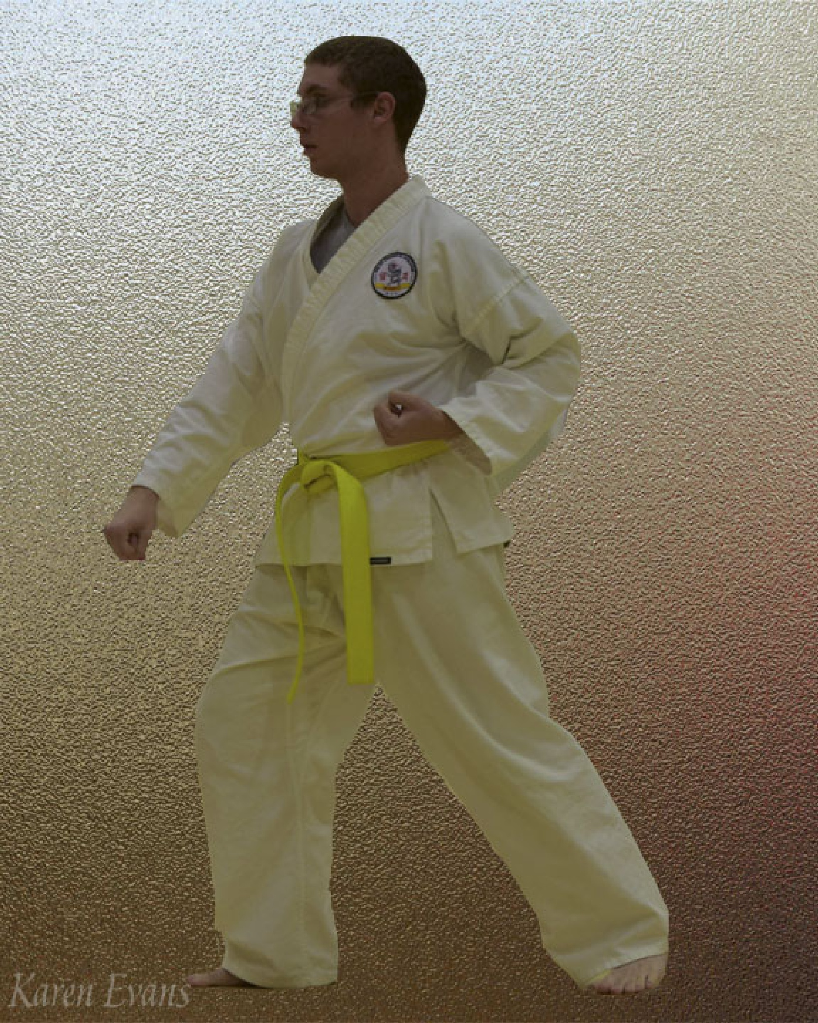 tae kwon do stance by Karen Evans