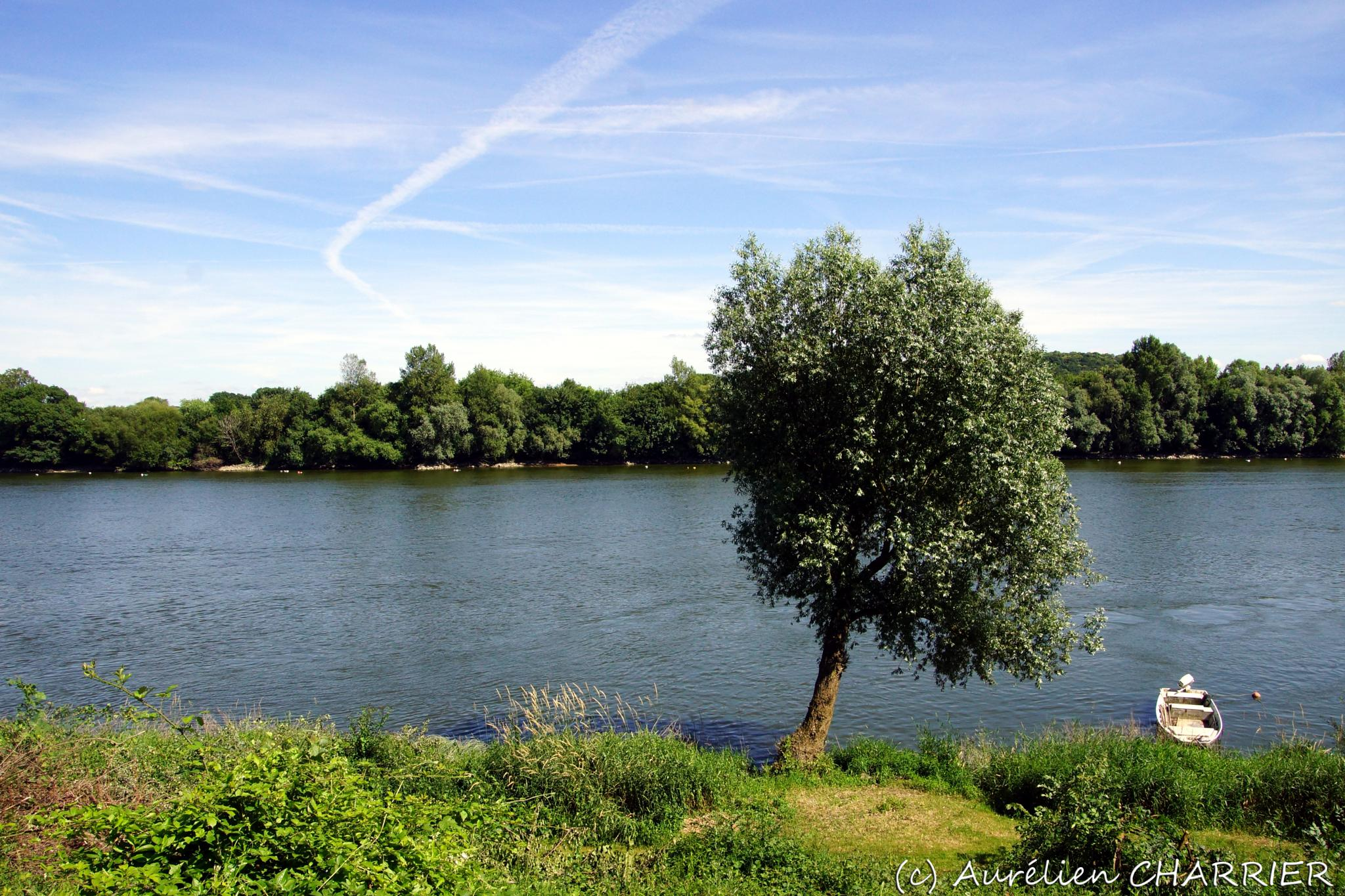 Loire River, France by Aurélien CHARRIER
