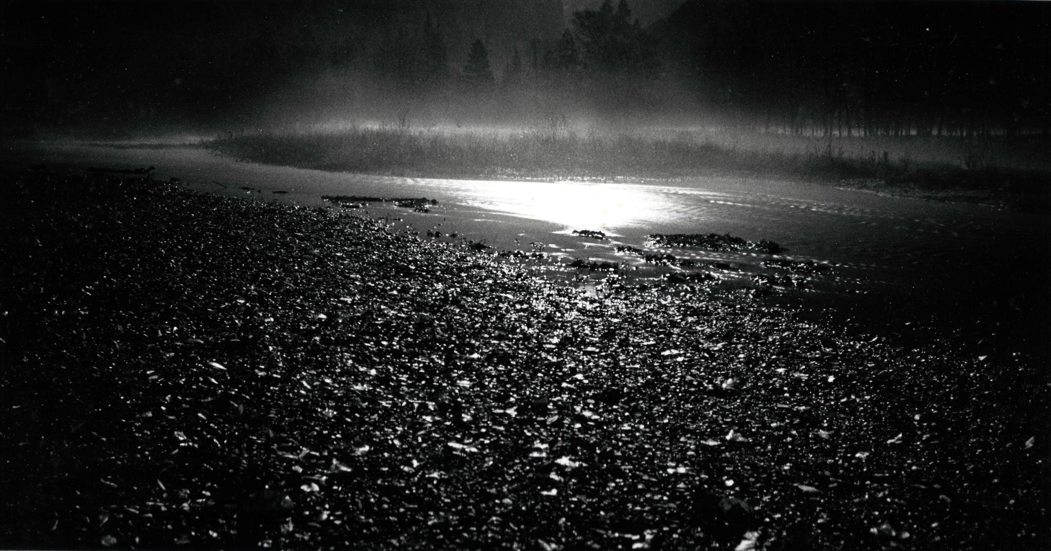 Steamy Moonlit Meadow, Yosemite Valley by downwindpassage
