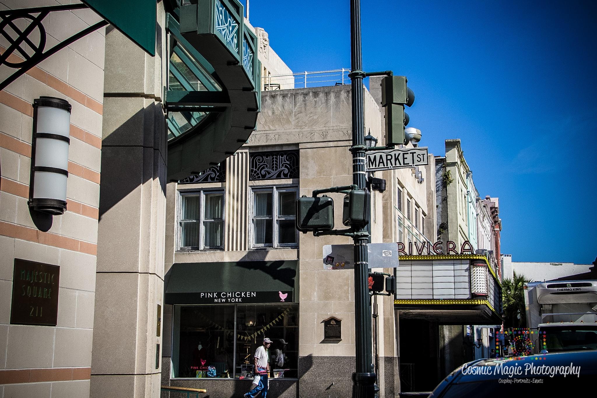 Charleston-South Carolina by Gina Adkins