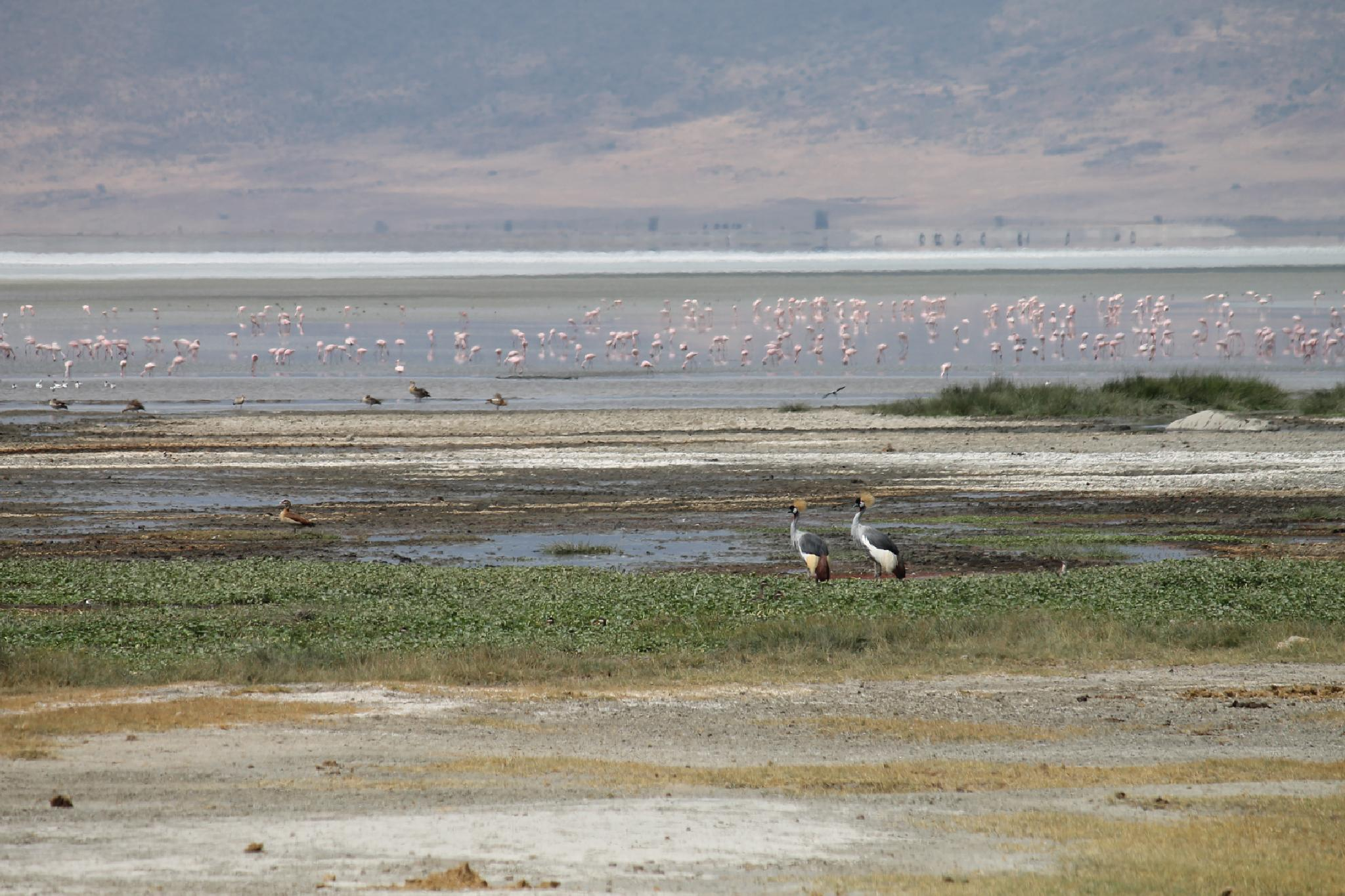 A PERFECT WATERCOLOR INSIDE NGORONGORO CRATER  by MarilynGraham