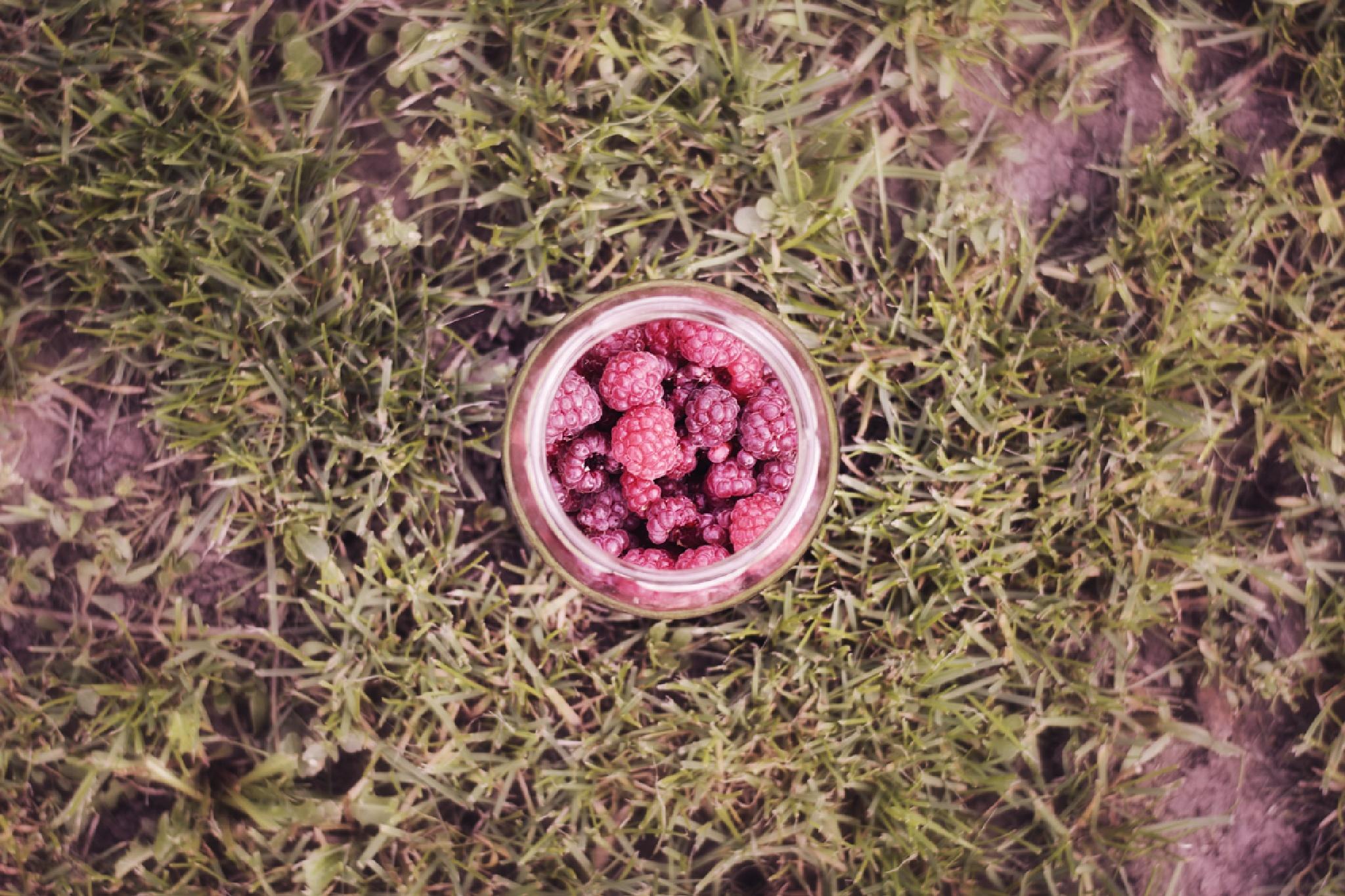 Raspberries by Janos Szentgyorgyi