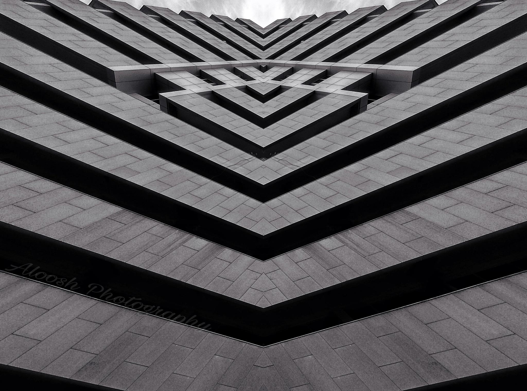 zooom by Ali Senged