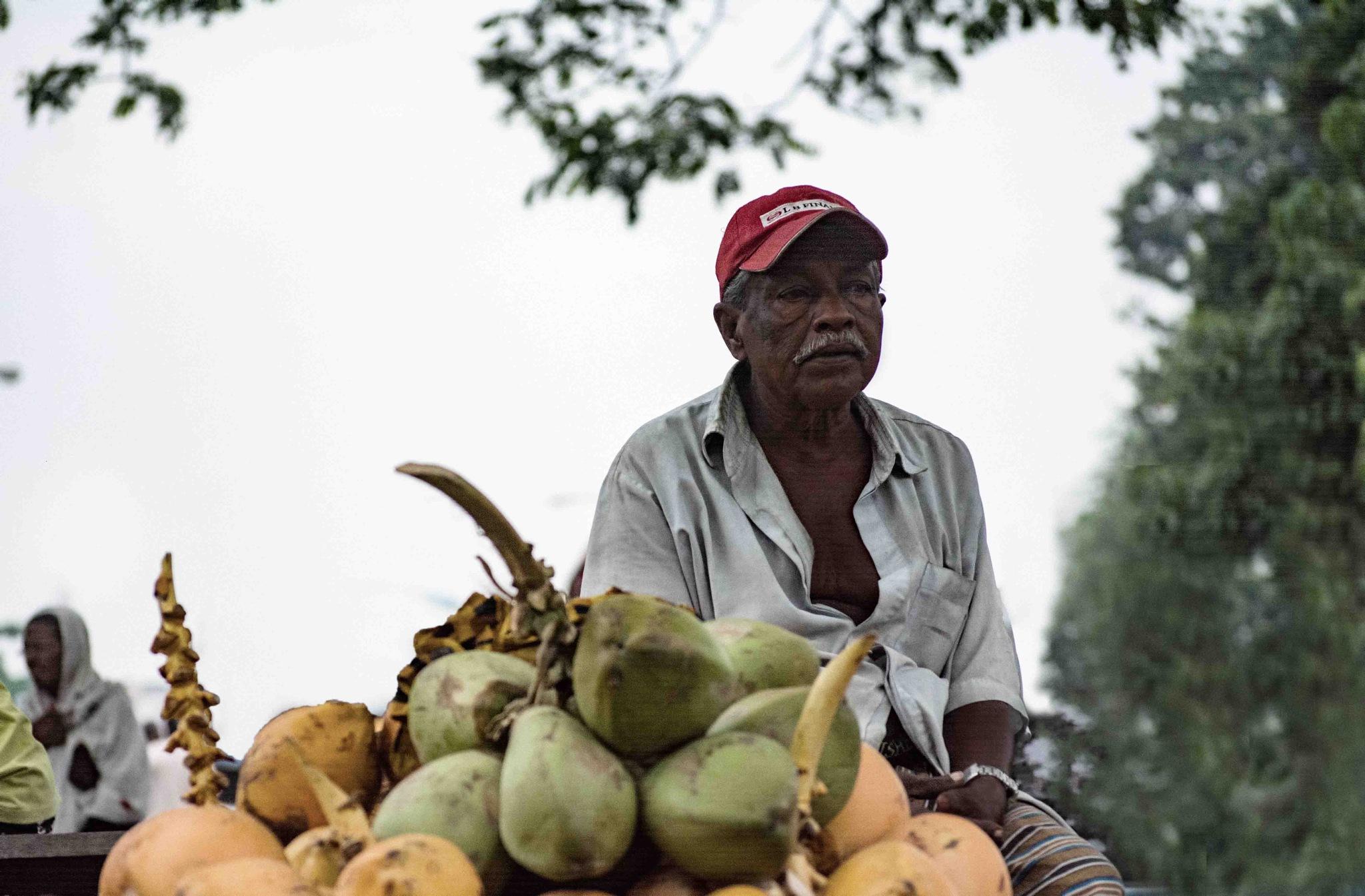 vendor  by rohantha1324