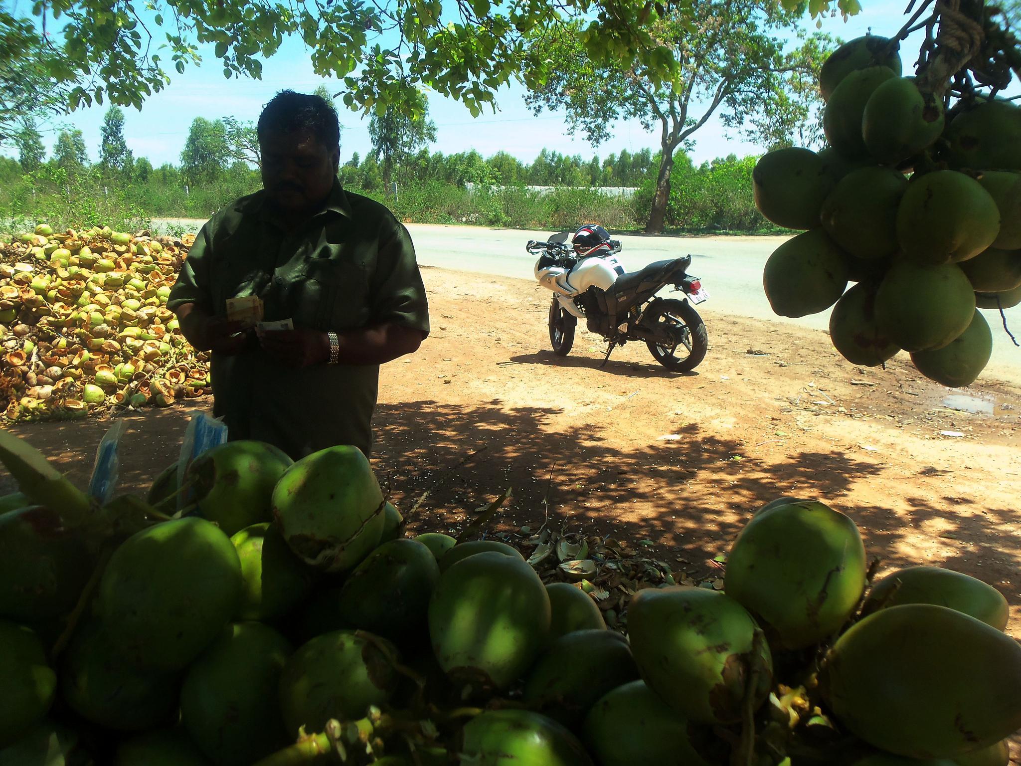 Tender Coconut Breaks by ManeeshNair