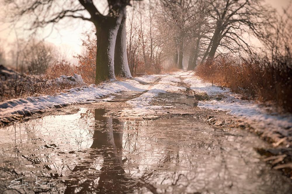 Photo in Landscape #zima #krajobraz #landscape